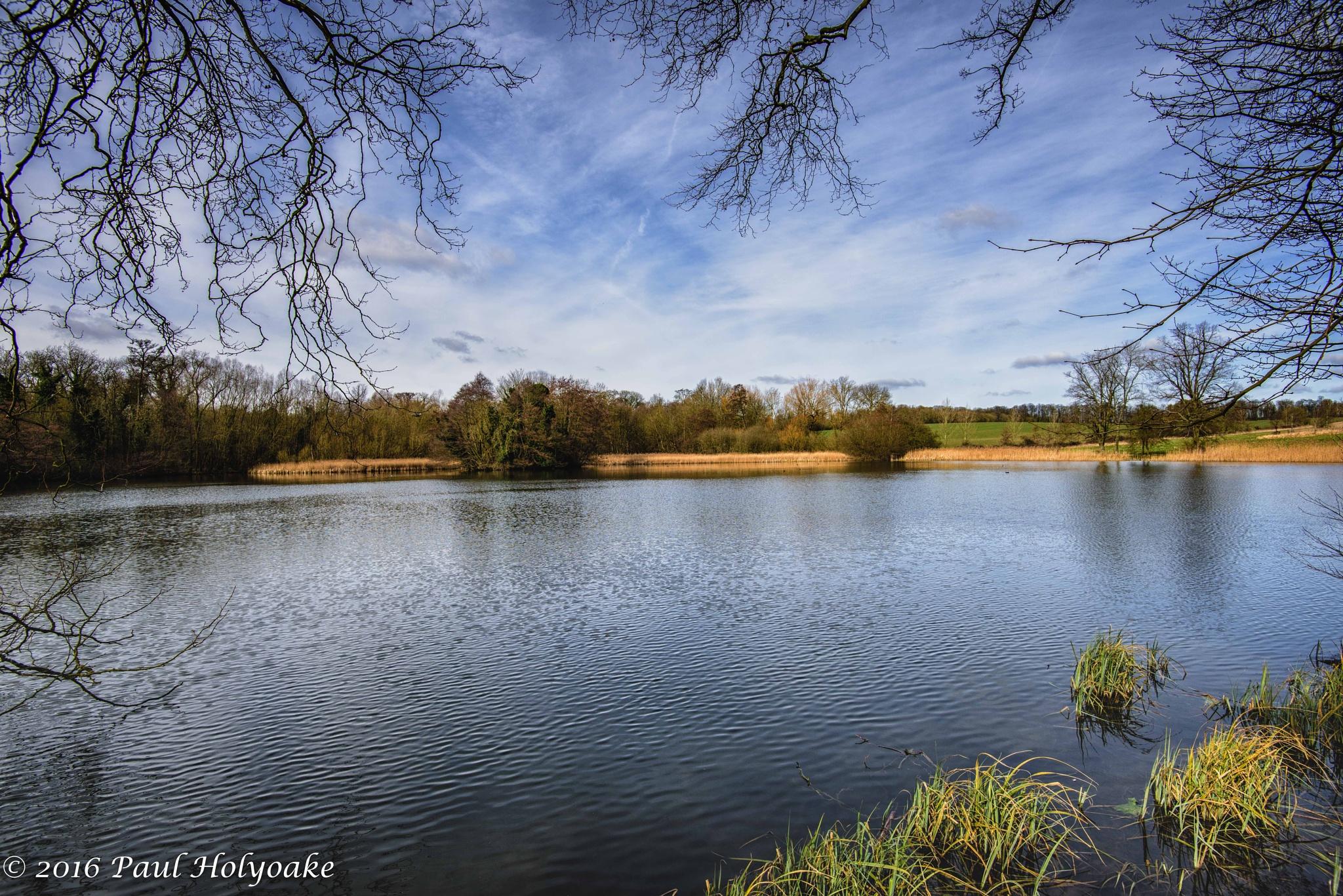 Wimpole Hall Lake by Photon