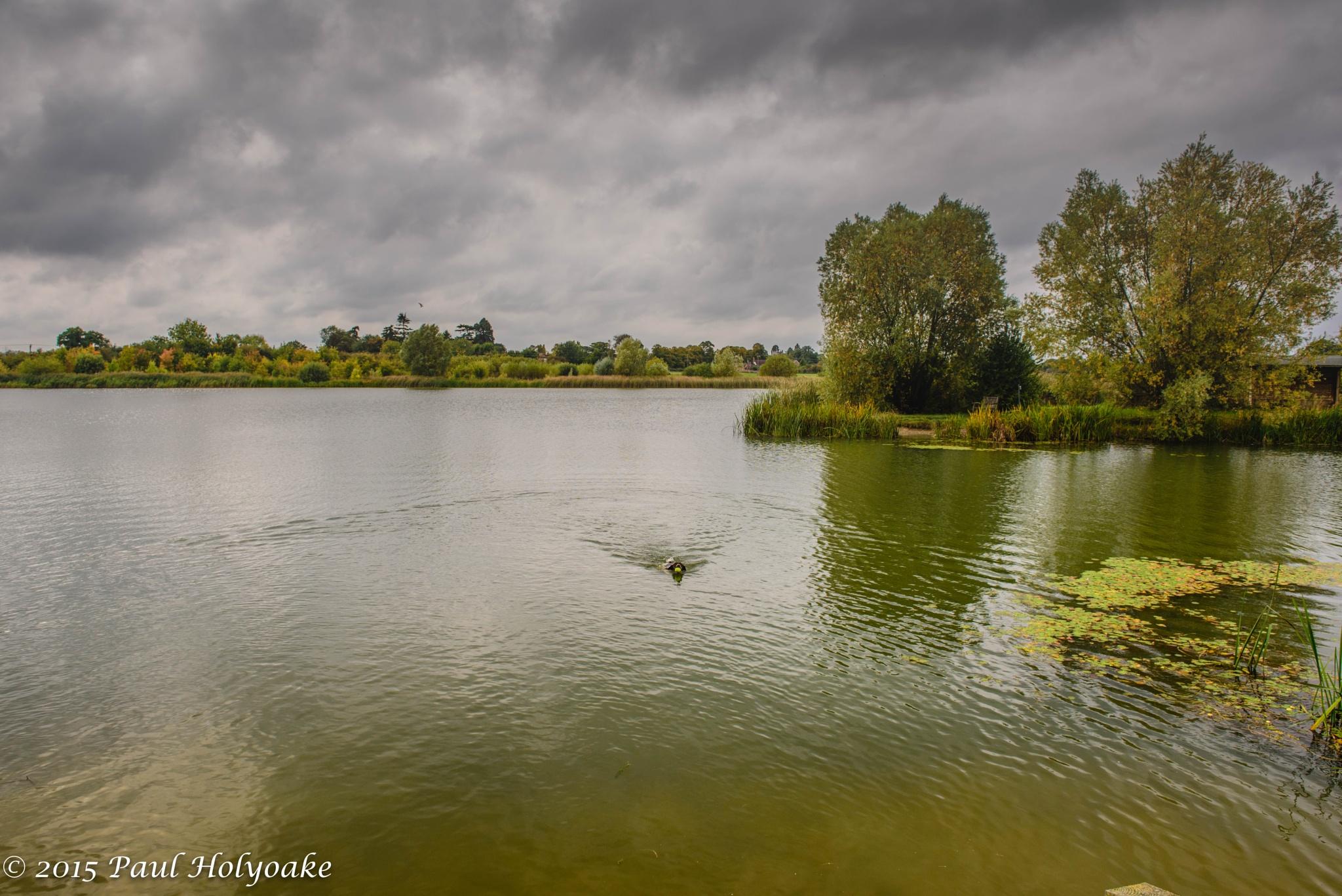 Autumn lake by Photon