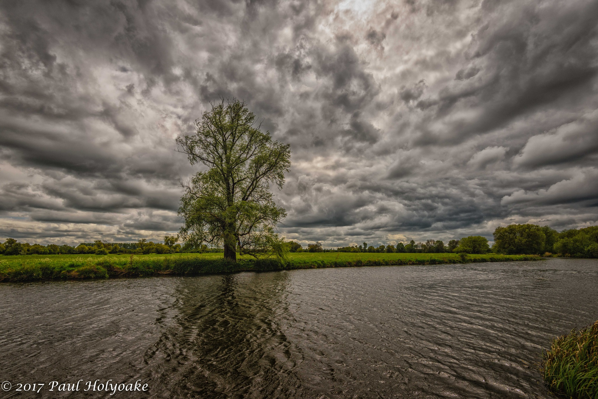Lone Tree by Photon