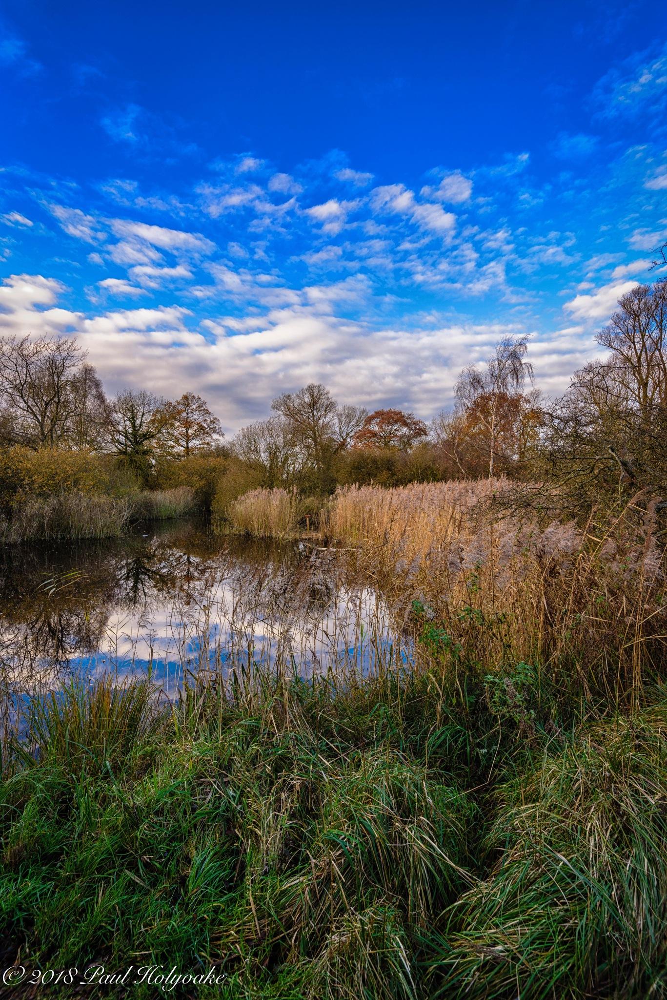 Fen Pond by Photon