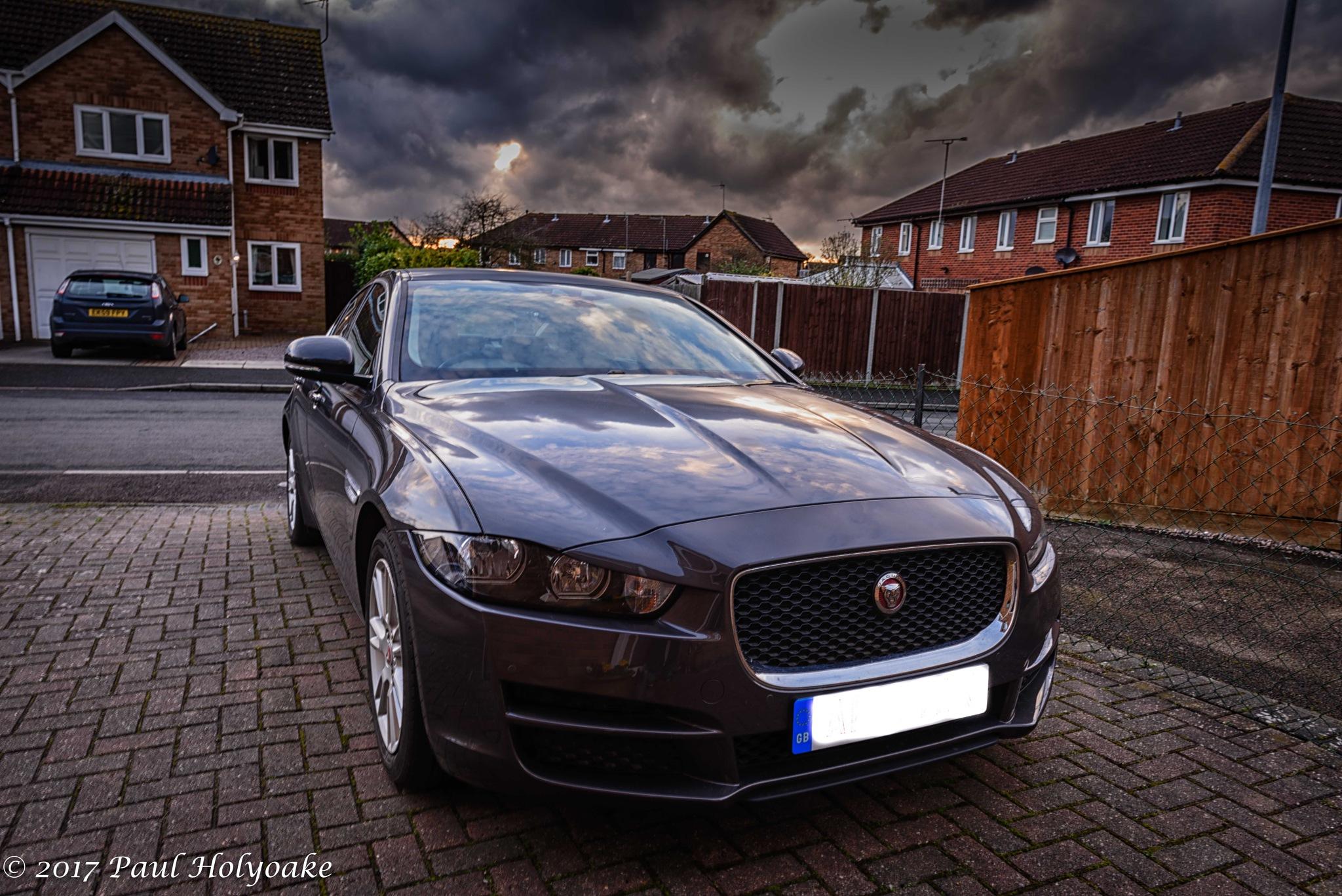 Jaguar by Photon