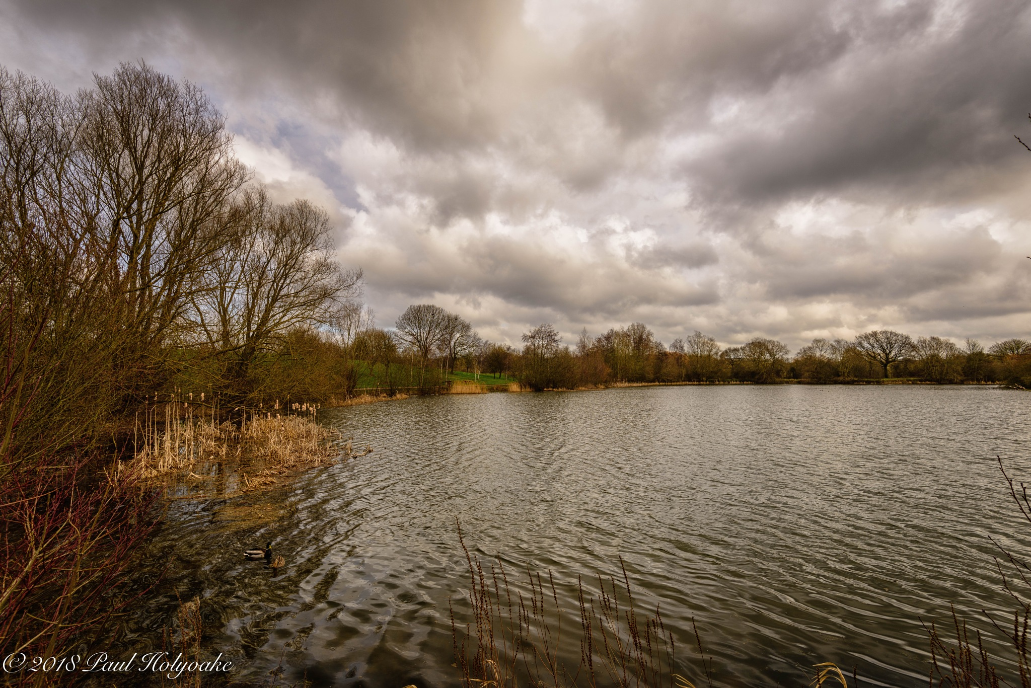 Ferry Meadows by Photon