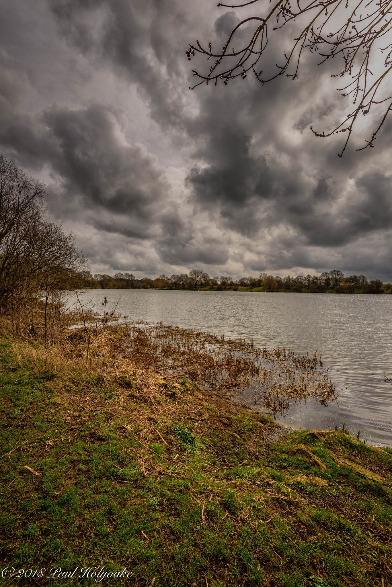 Country Park by Photon