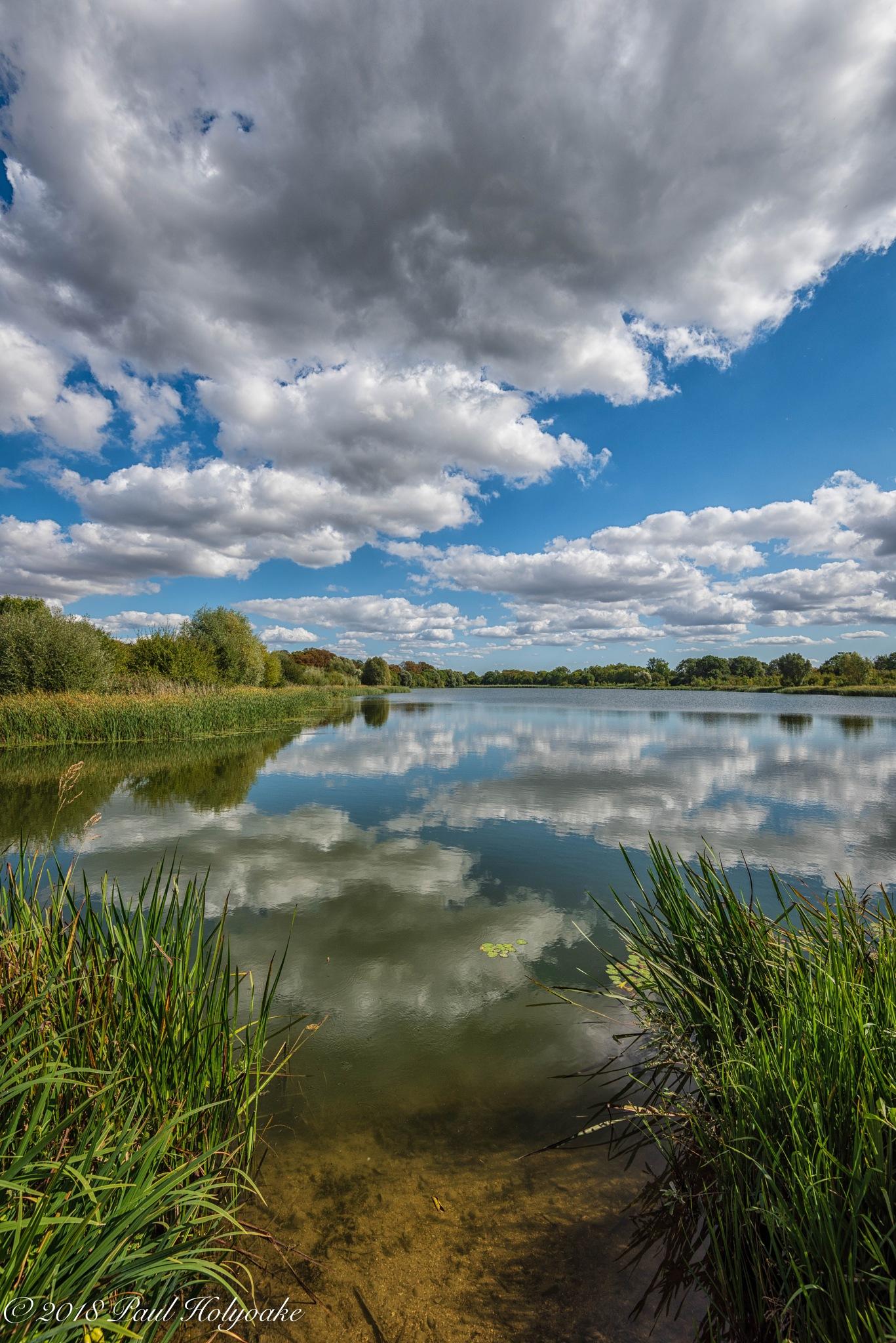 Hinchingbrooke Park by Photon