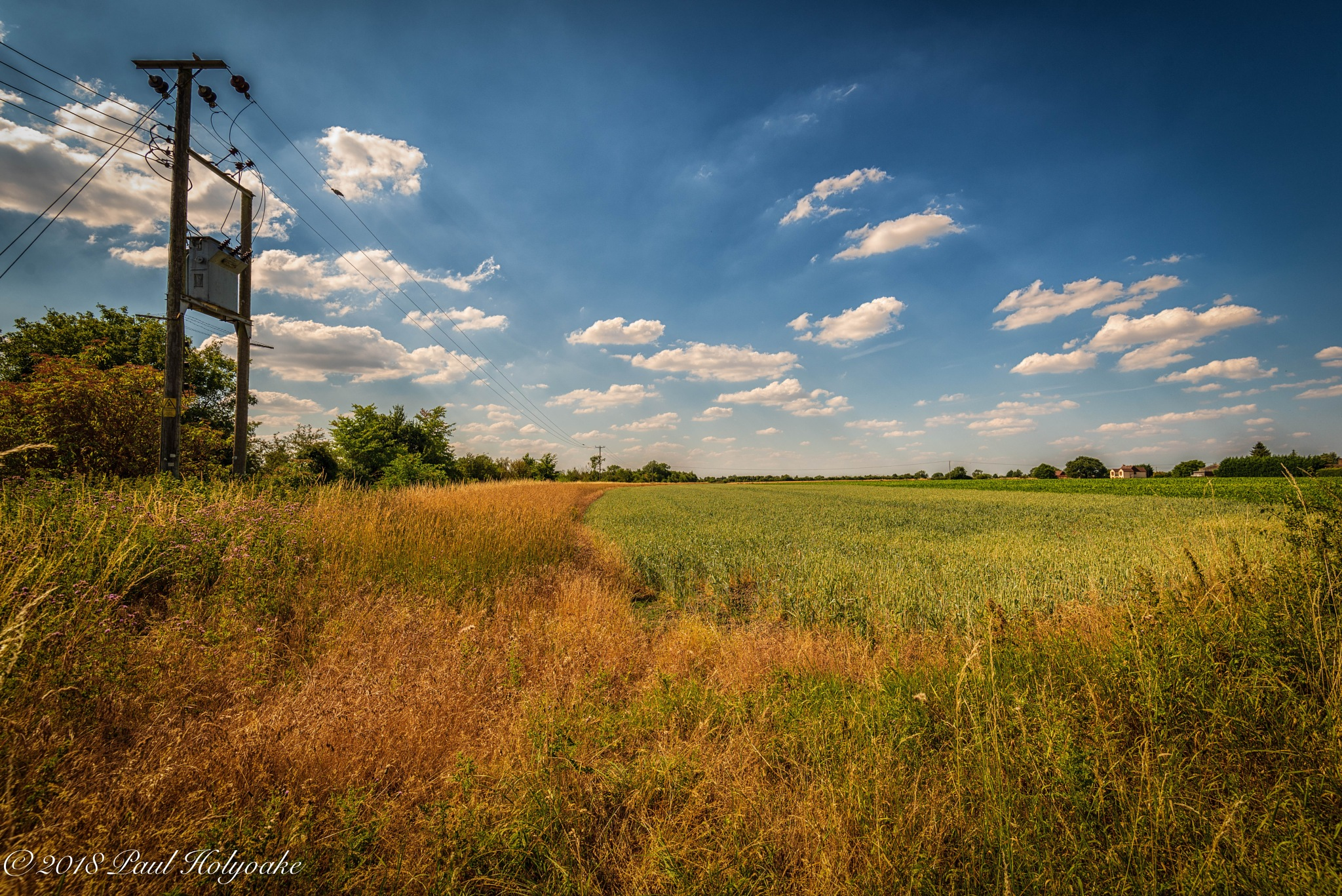 Rural Power Lines by Photon