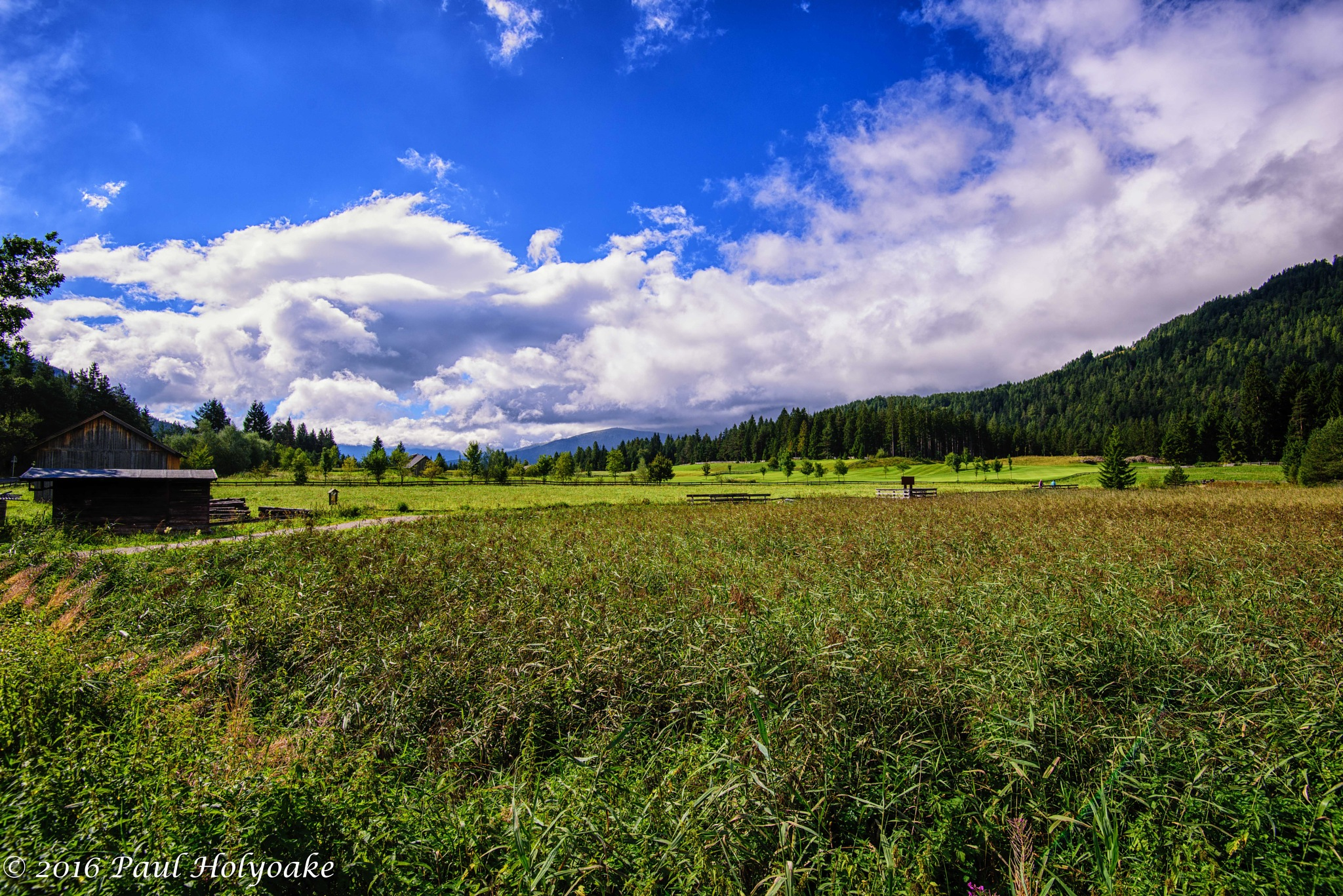 Reither Moor by Photon