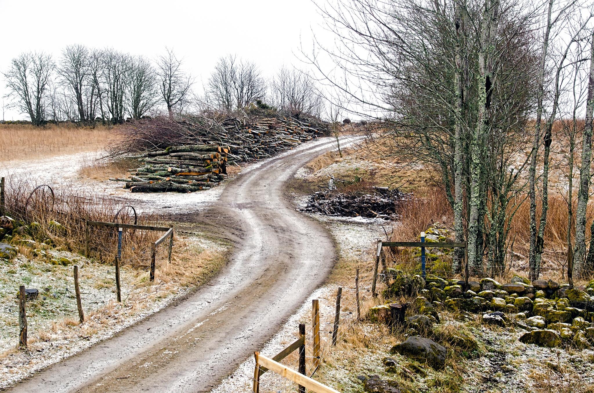 Photo in Random #västergötland #sverige #per f andersen #travel #rural #forest
