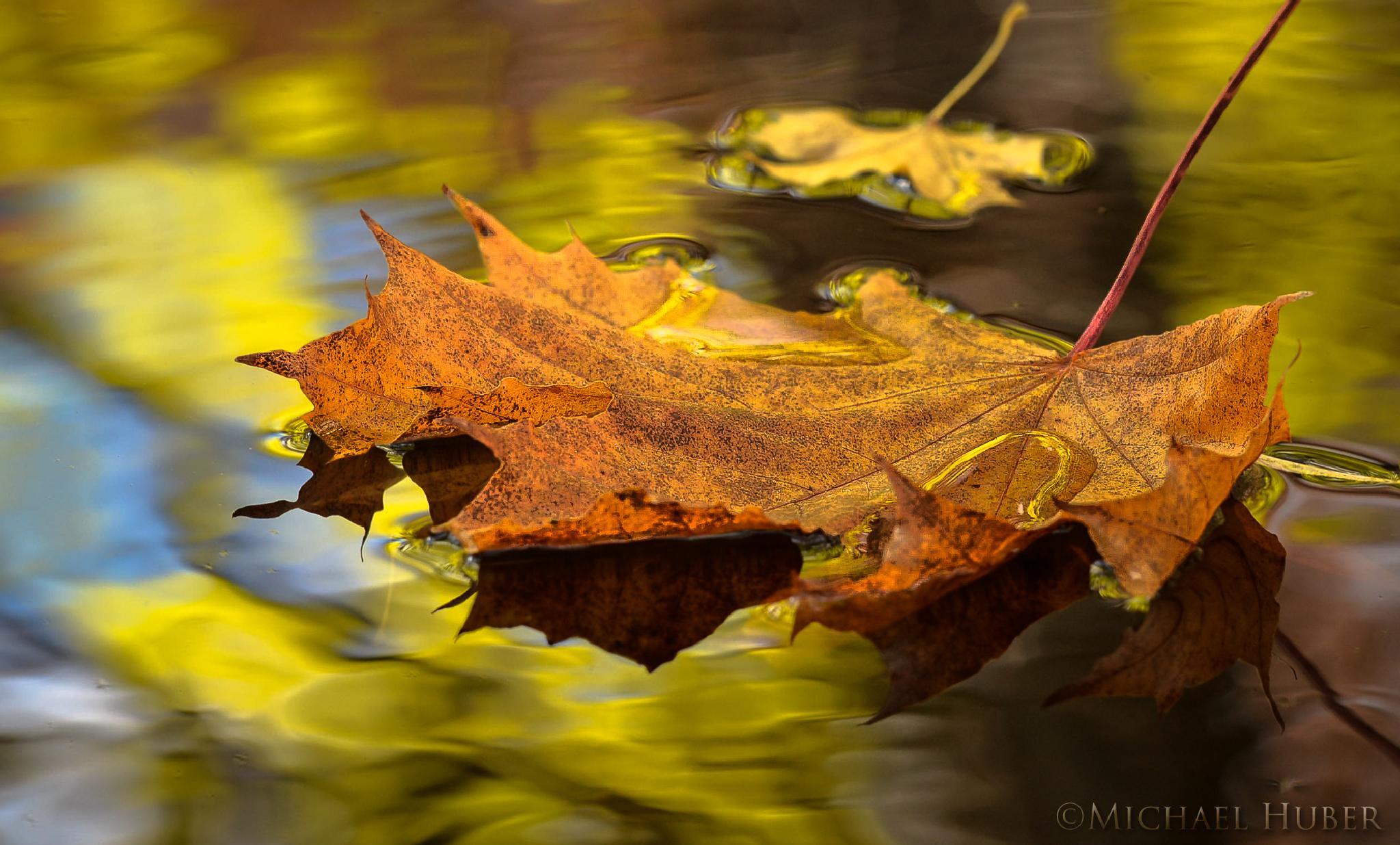Autumn Reflections by Michael Huber