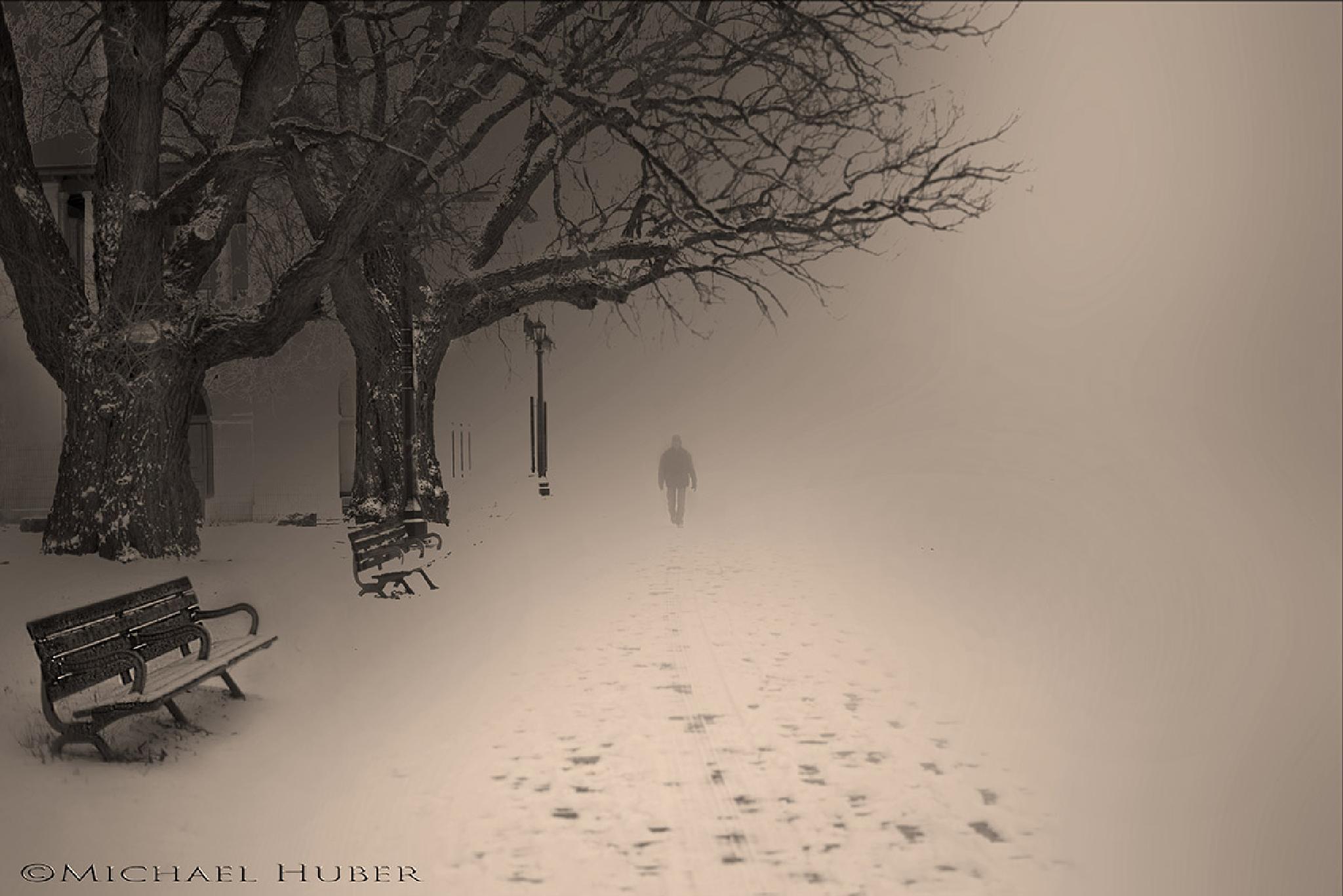 Winter Stroll by Michael Huber