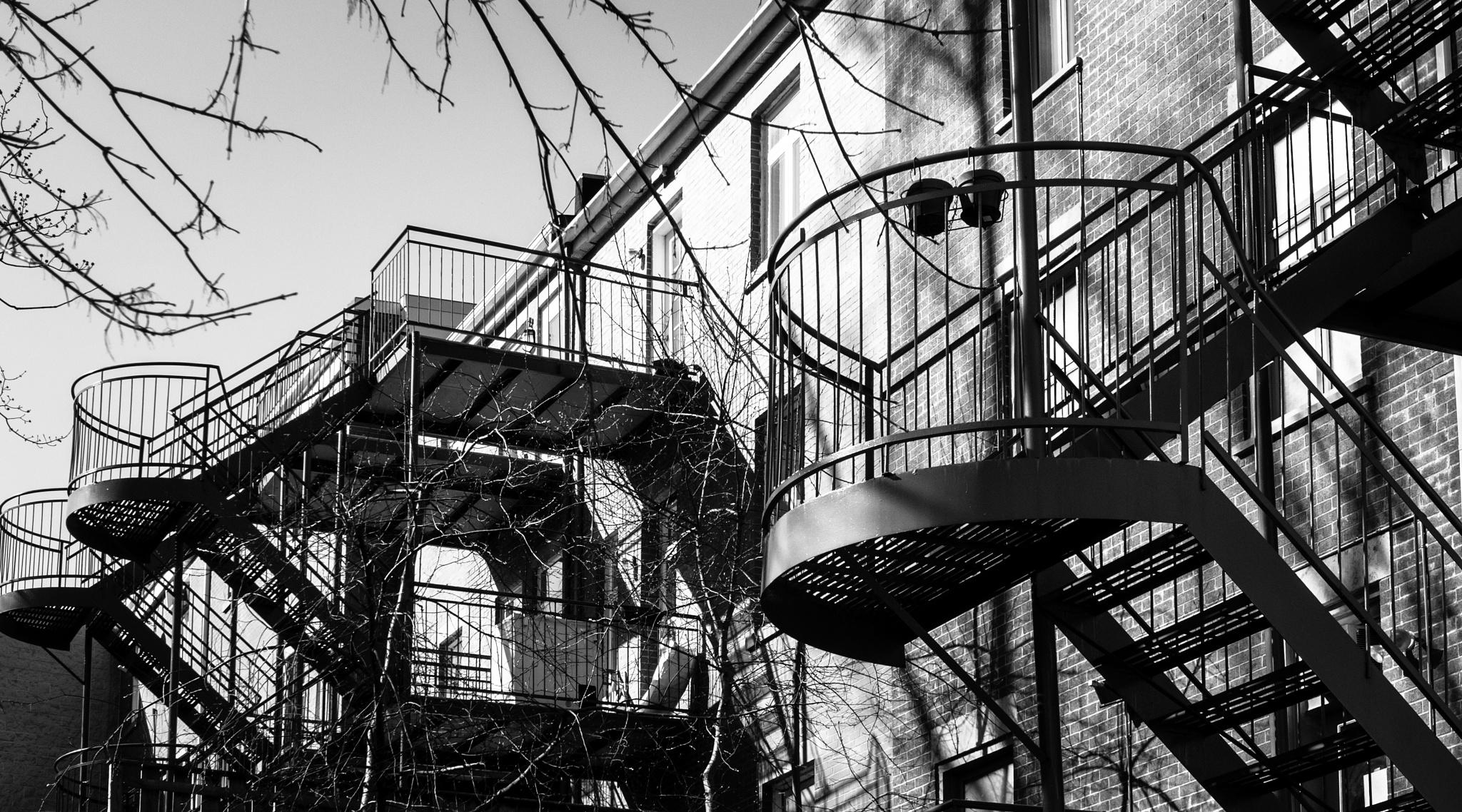 Stairs, de-la-Gauchetière street, Montreal by Martine de Lajudie
