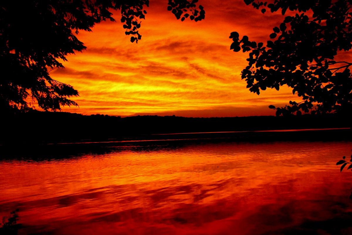 """Firelight"" by Gregg Michael"