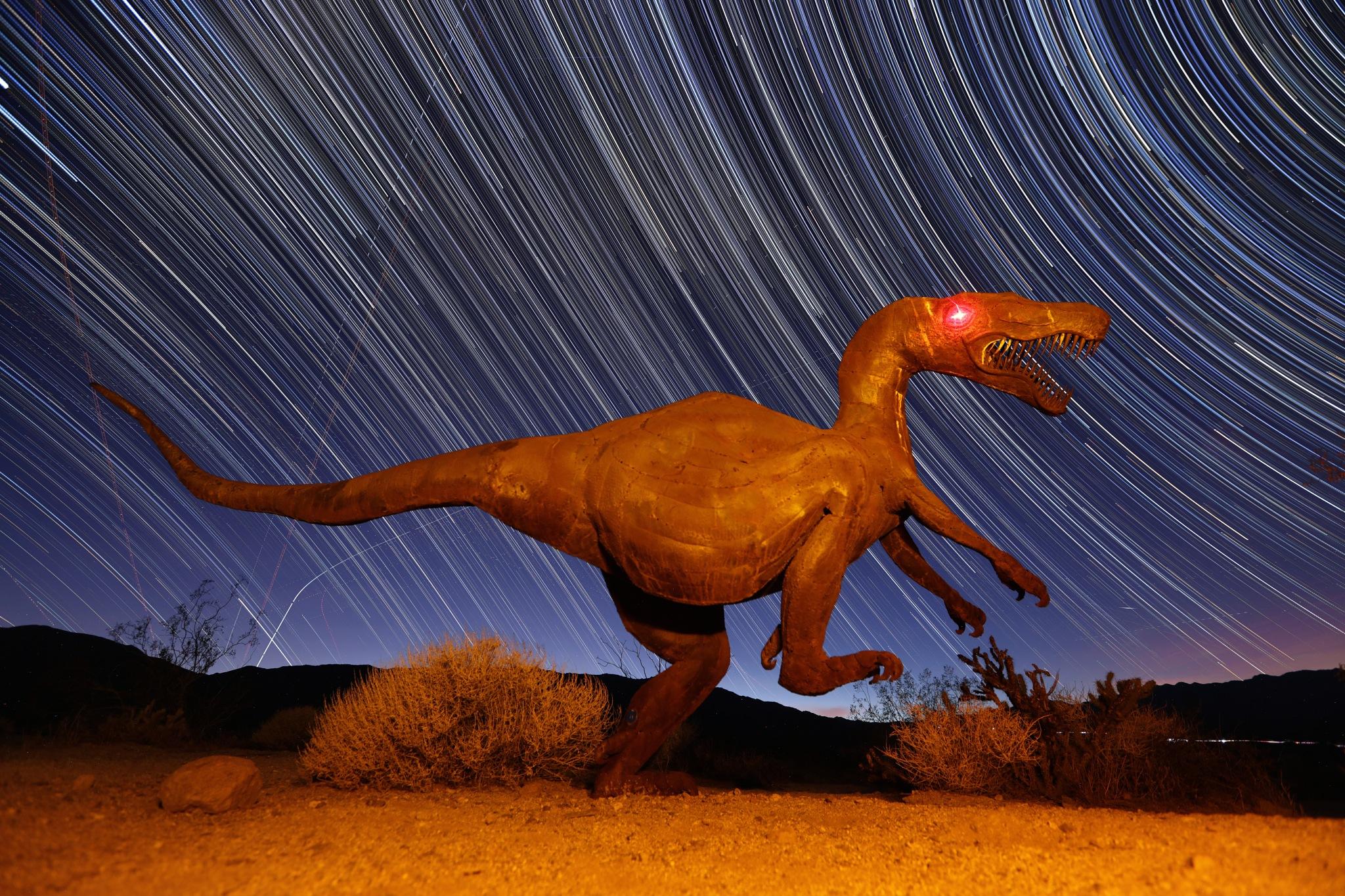 Borrego Dino by Chris Matthew Brady