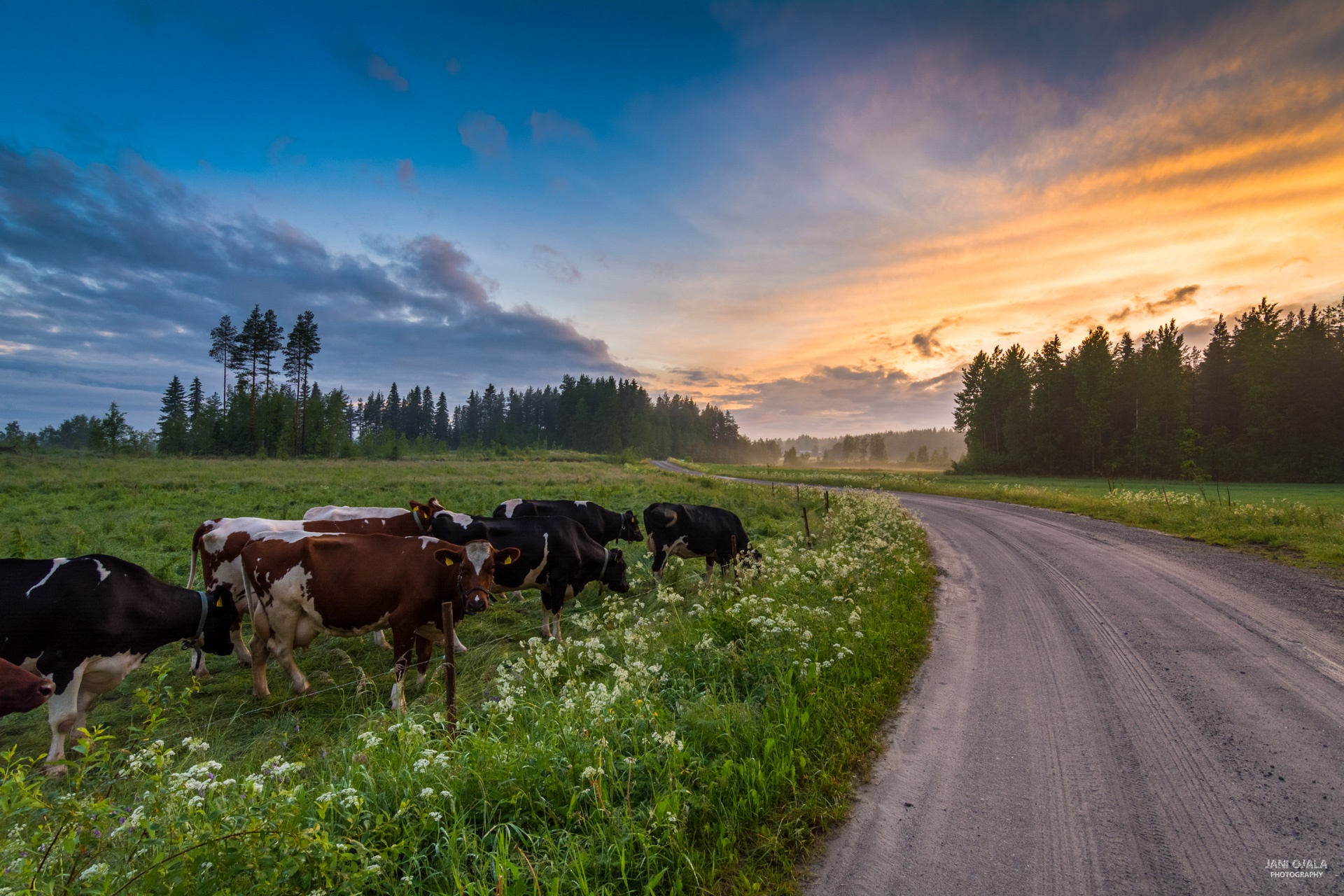 Peaceful midsummer day to everyone! by JaniOjala