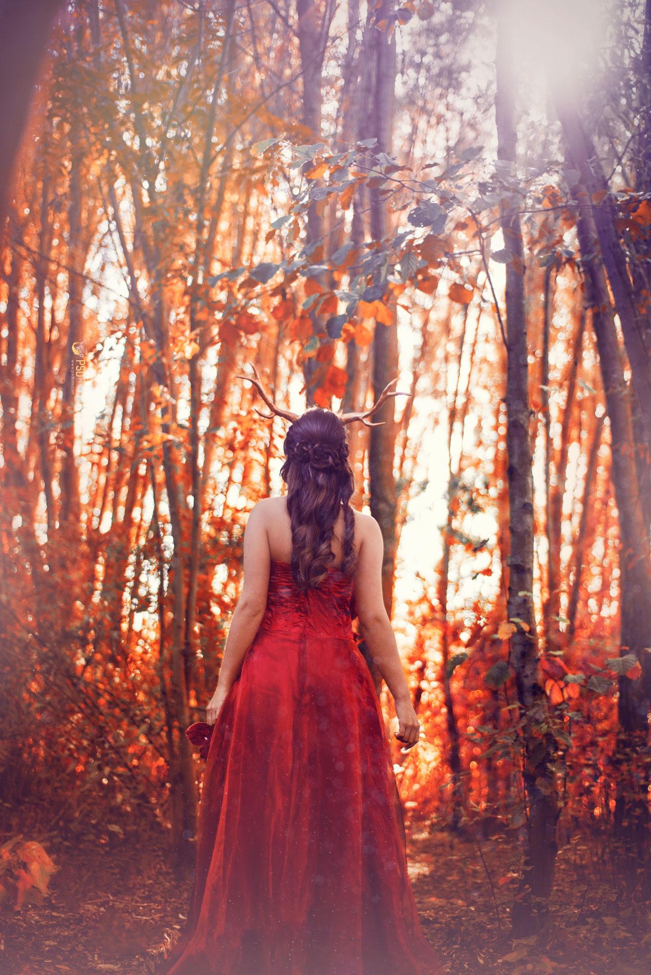 Autumn is here by Original Cin