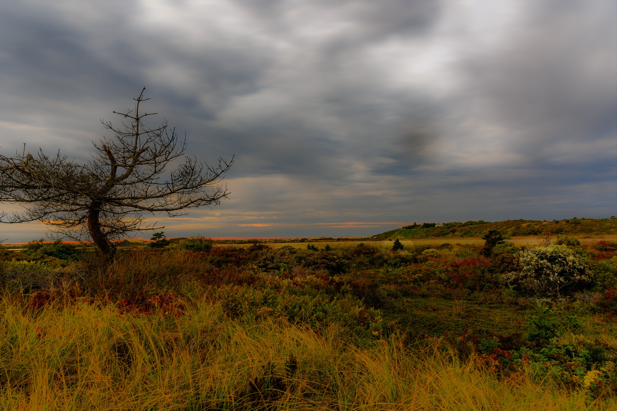 Dusk at the Grasslands of High Head, Cape Cod by Steve Director
