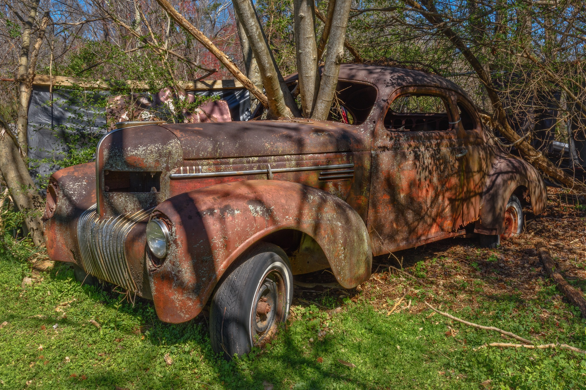 Abandoned Car by Steve Director
