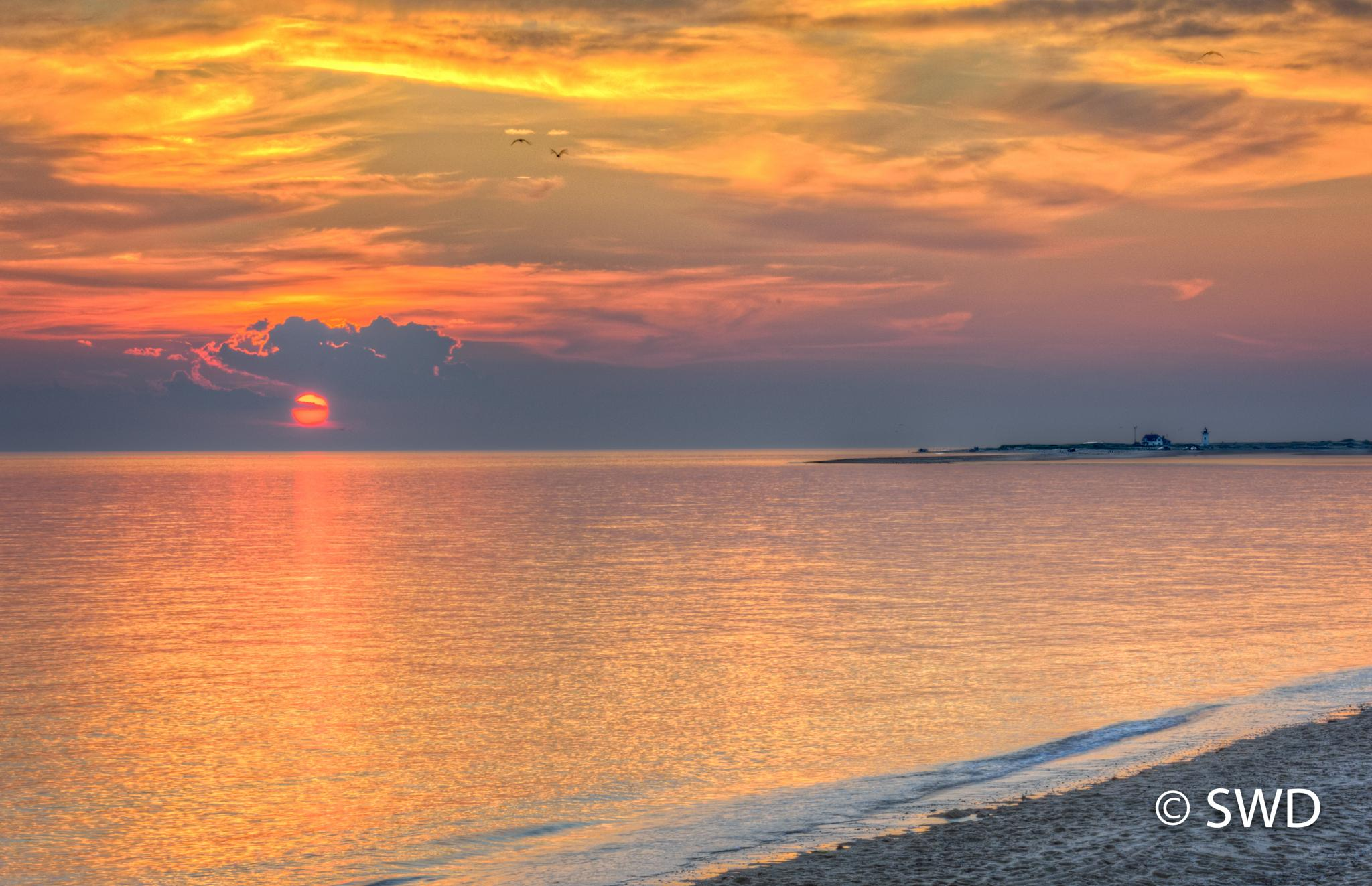 Race Point Lighthouse at Sunset as seen from Herring Cove Beach by Steve Director