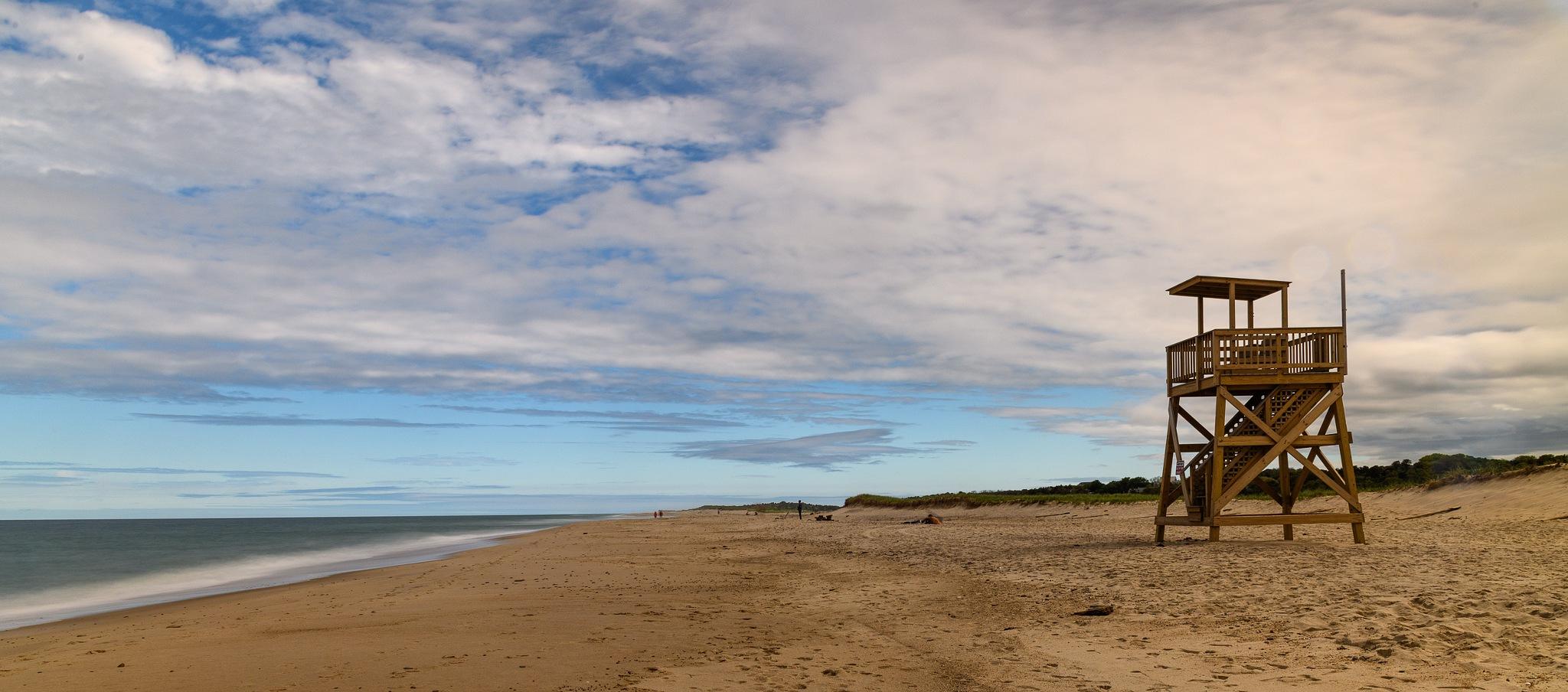 Beach Sentry by Steve Director