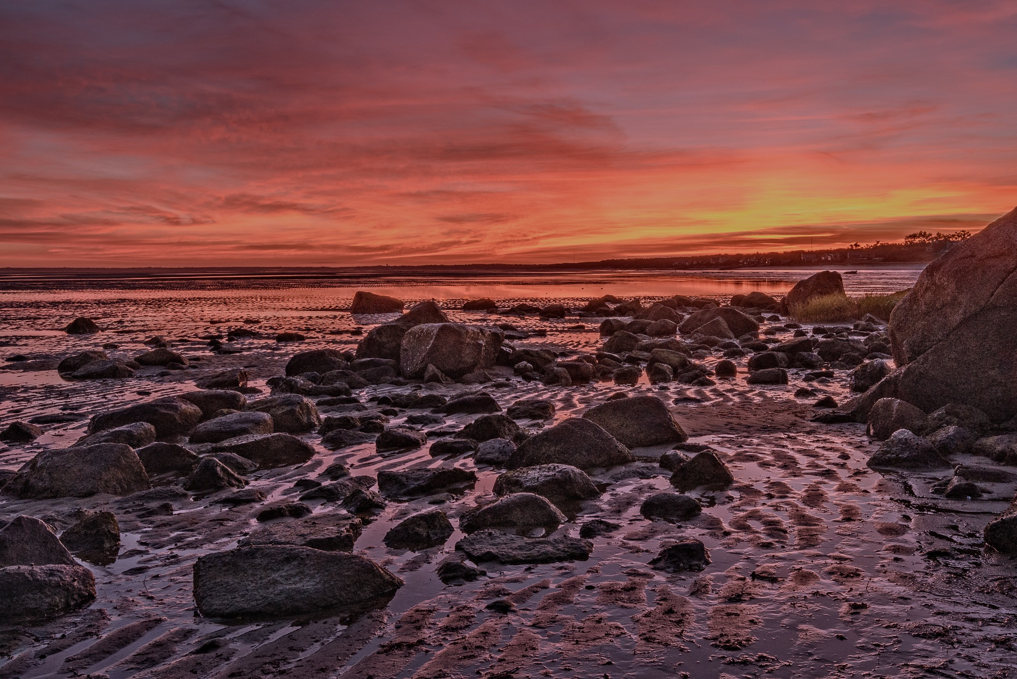 Sunrise over Cape Cod Bay at Low Tide by Steve Director
