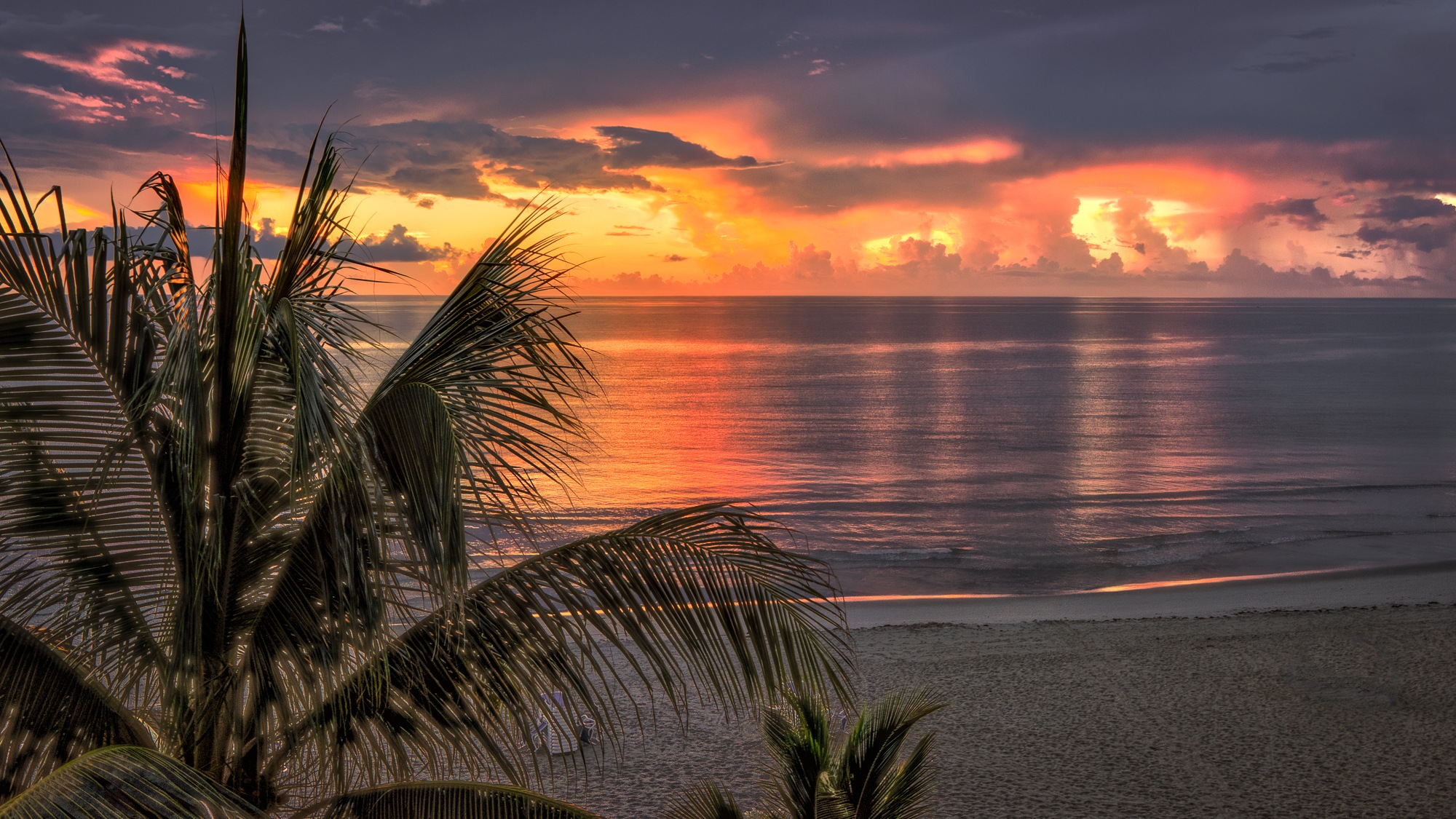 Dawn on the Florida Coast by Steve Director