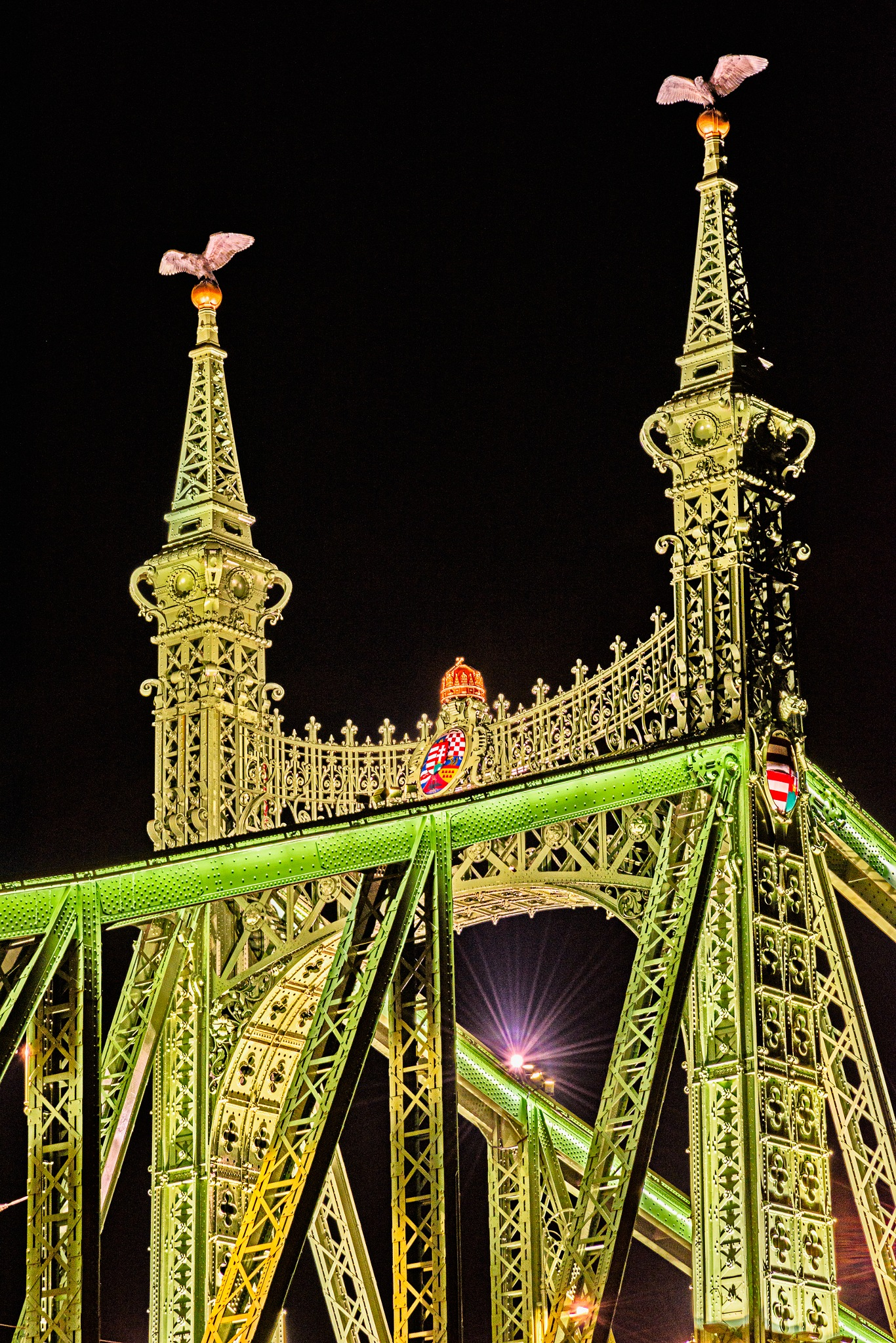 Liberty Bridge, Budapest, Hungry by Steve Director