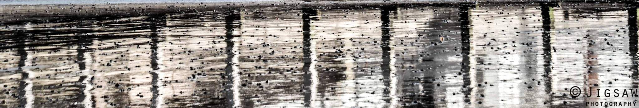 reflection in wet sand by Claire Bhela