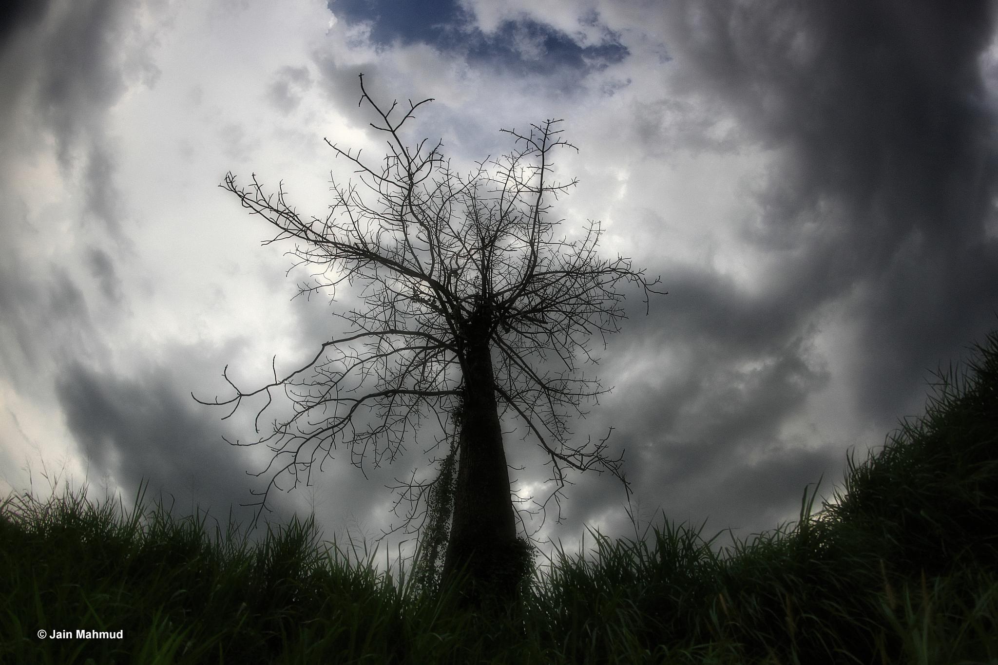 Cloud by jainmahmud