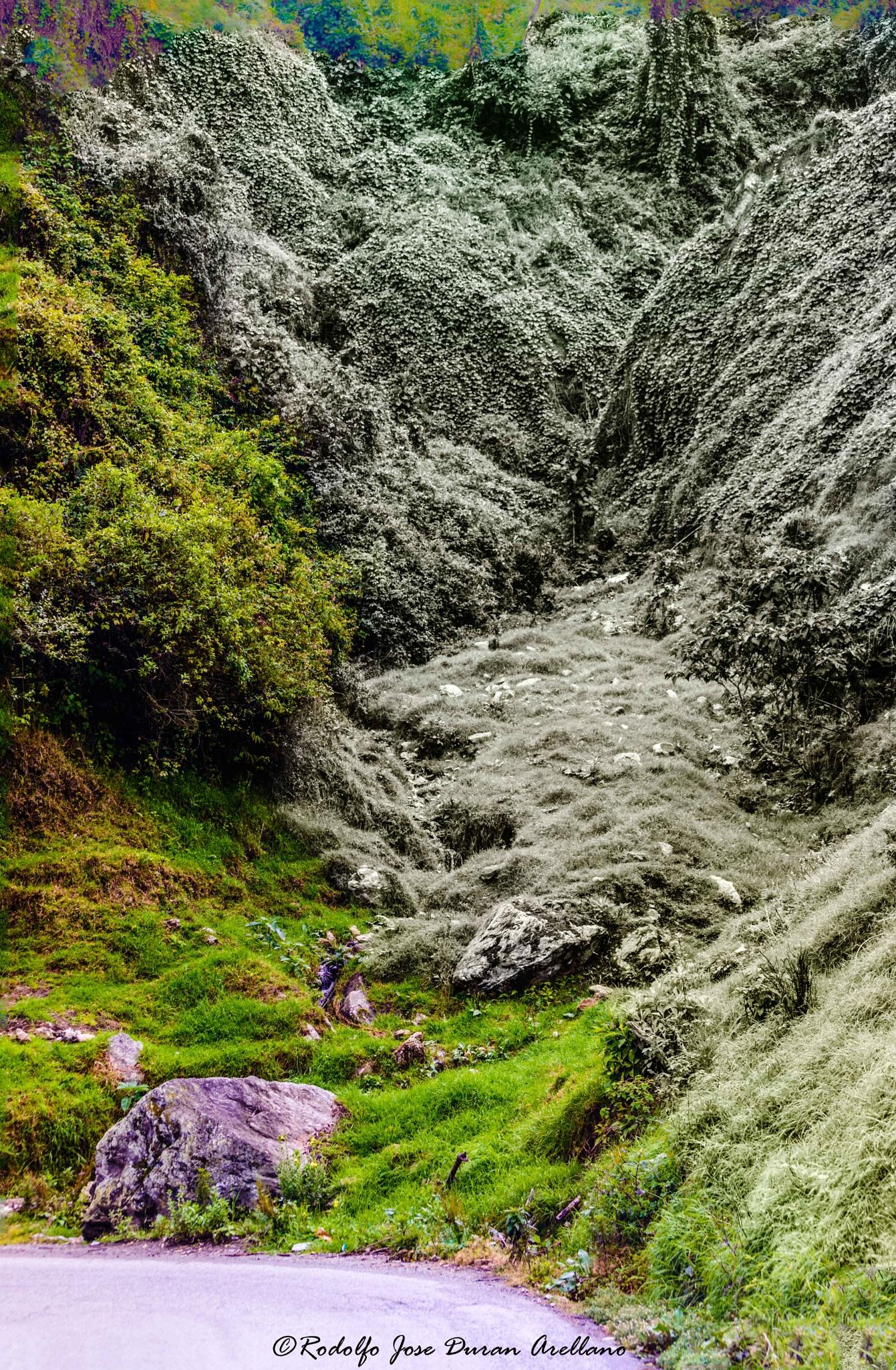 un pequeño torrente.............................. by Rodolfo José Durán Arellano
