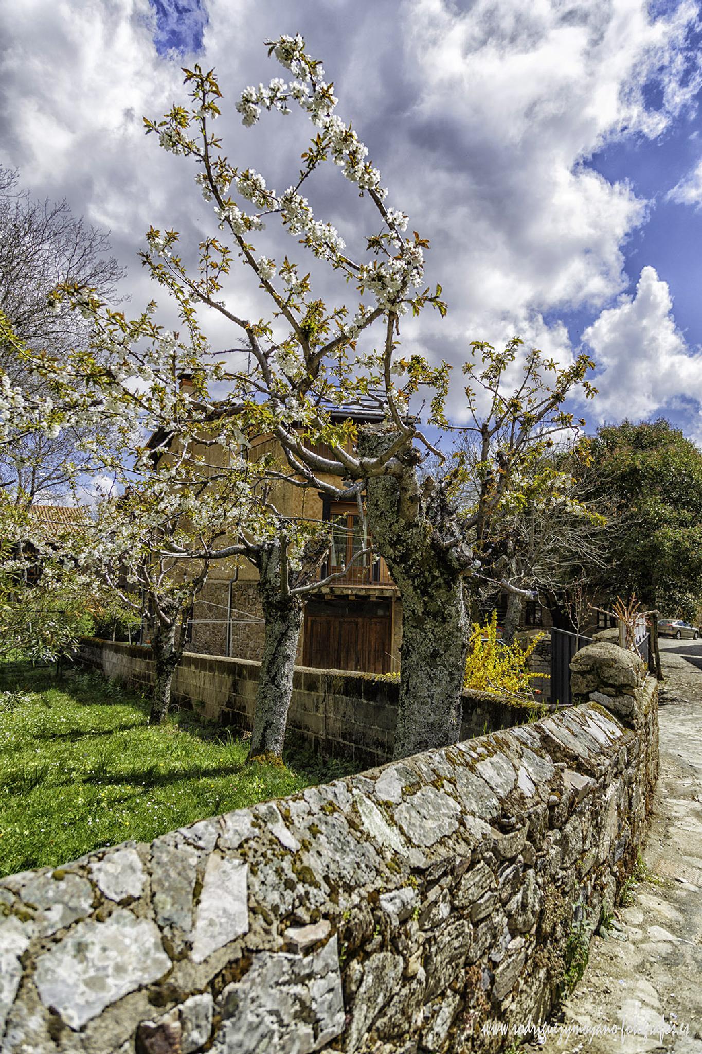La Alberca - Salamanca - Spain by luisrguez