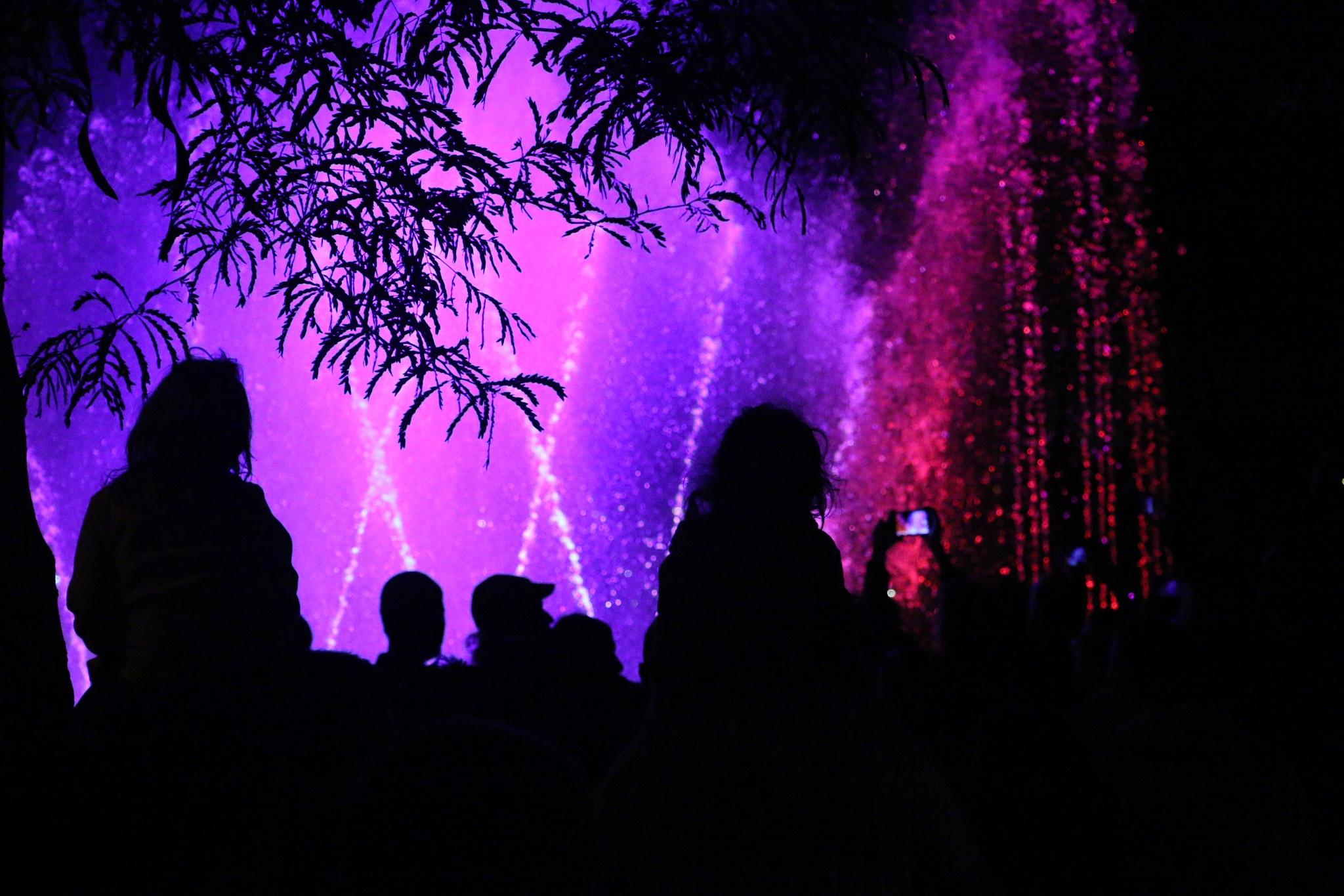 Light Festival in Jerusalem by Serge