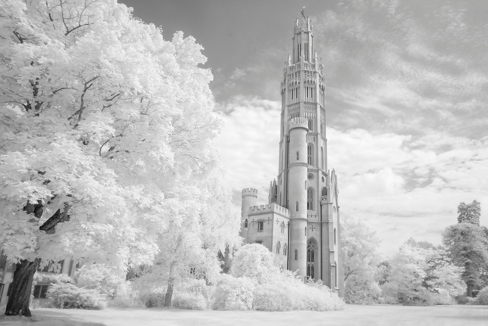 Hadlow Tower by Roy Smart