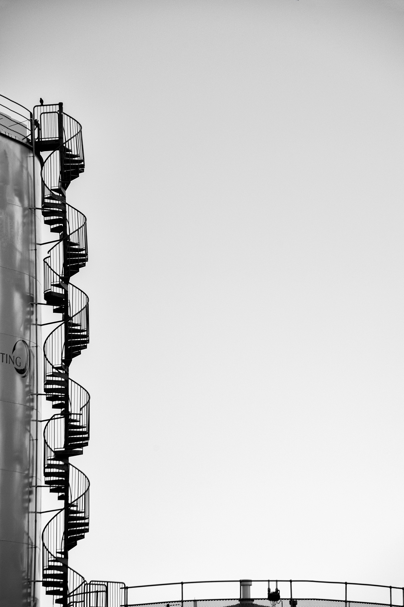DNA by Trond Strand