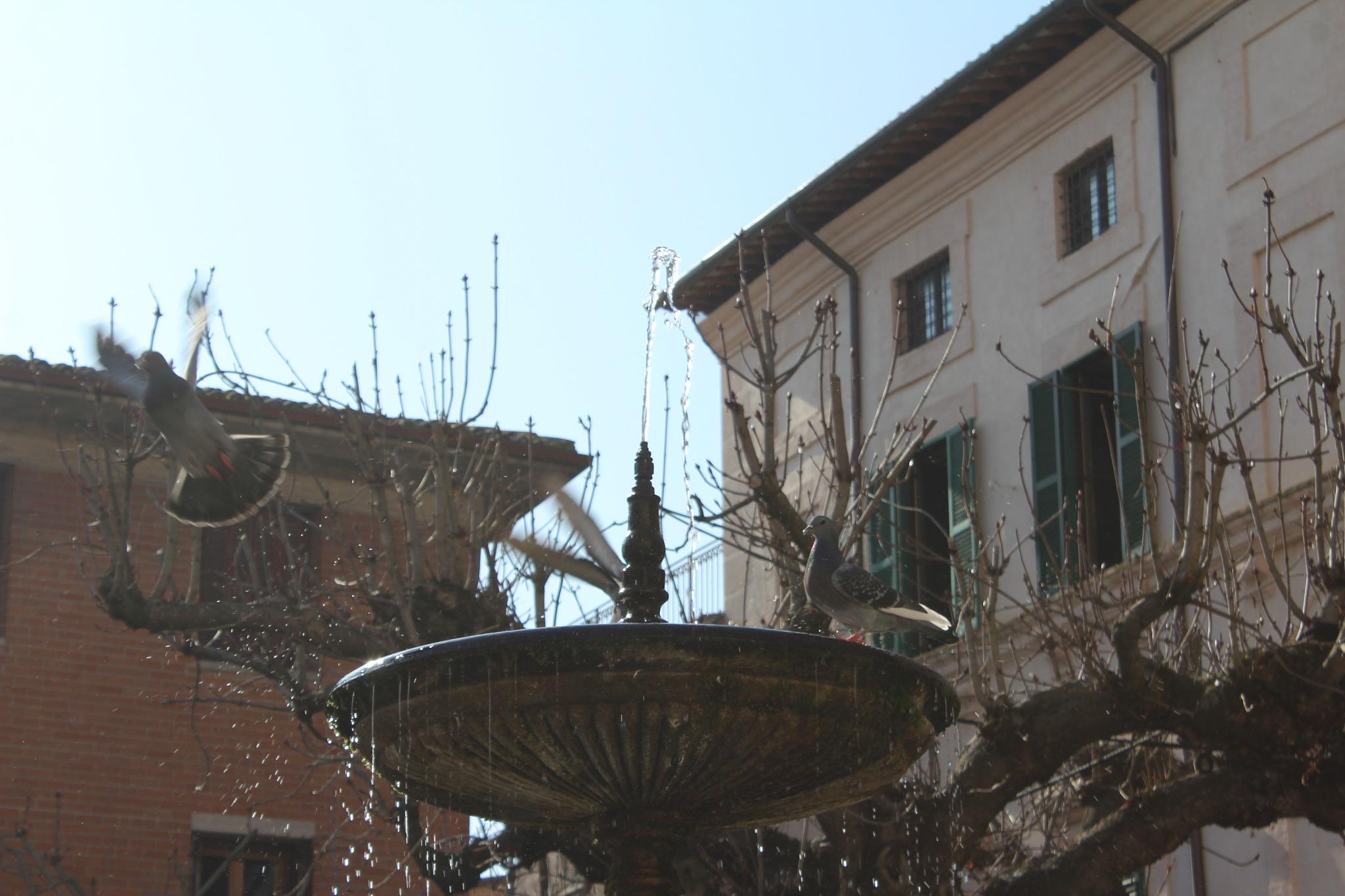 Spello, Umbria by Alberto Vivarelli