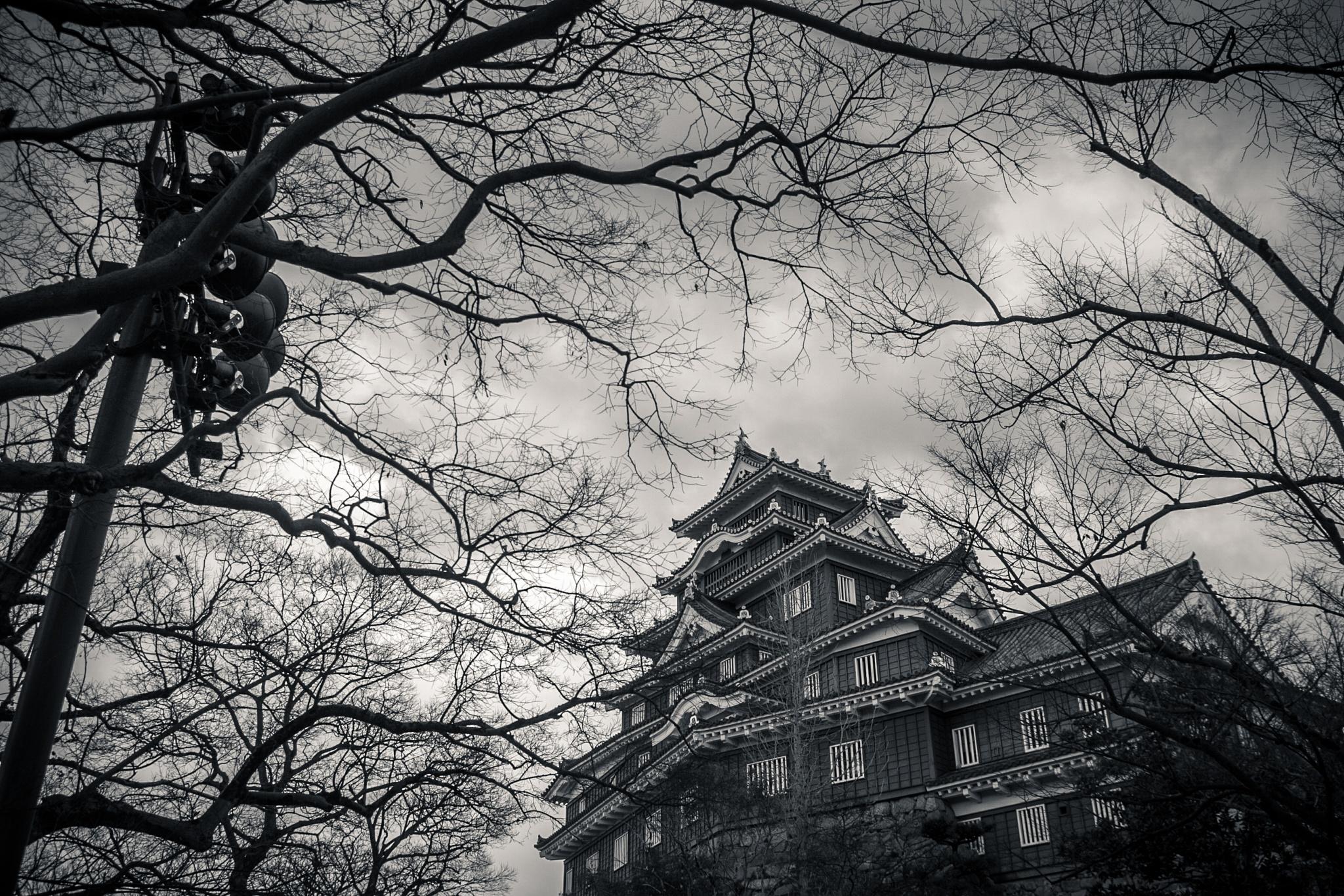 Abandoned Castle by Ken Ohki