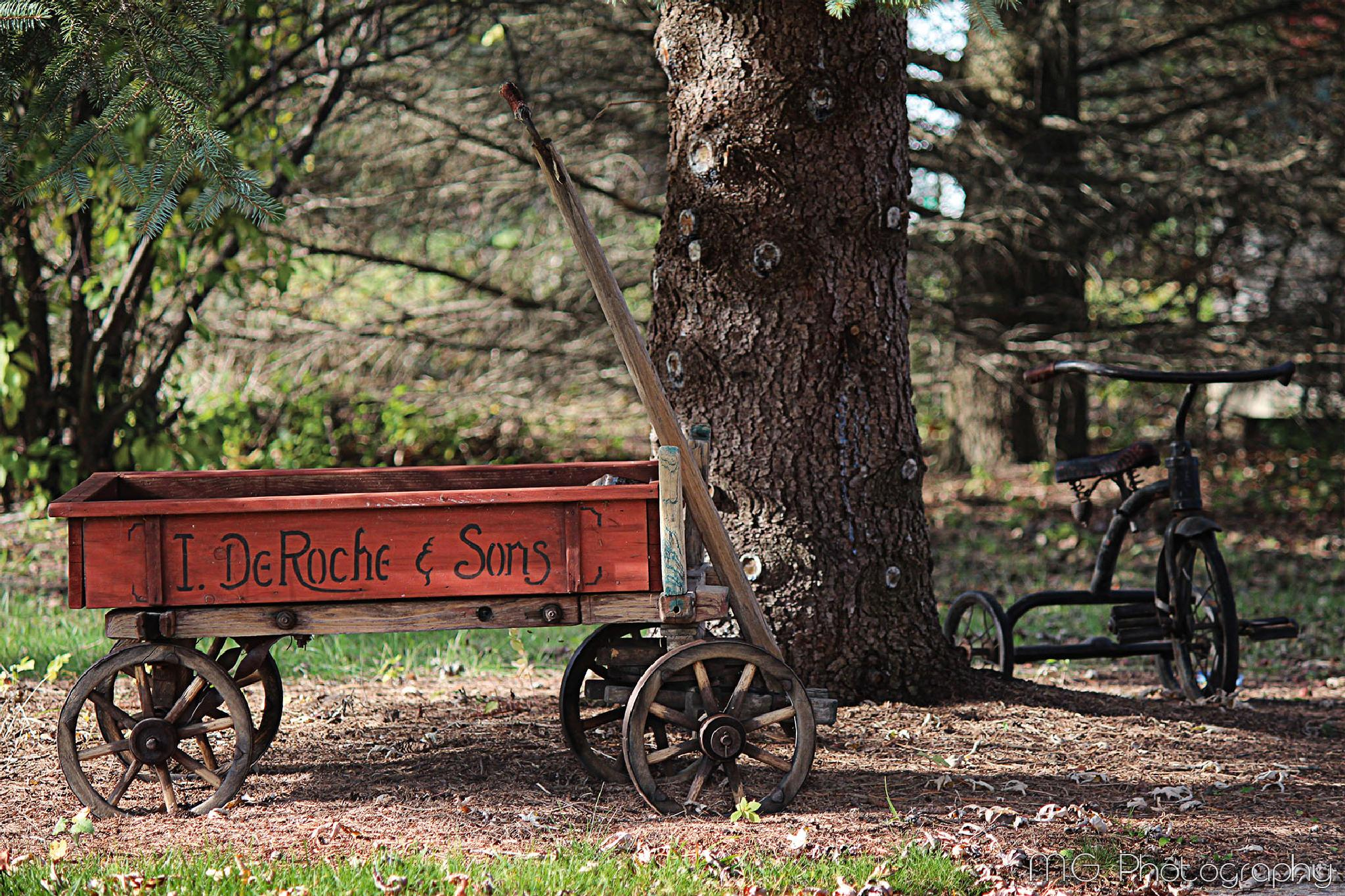 Little Red Wagon by mcgiddin
