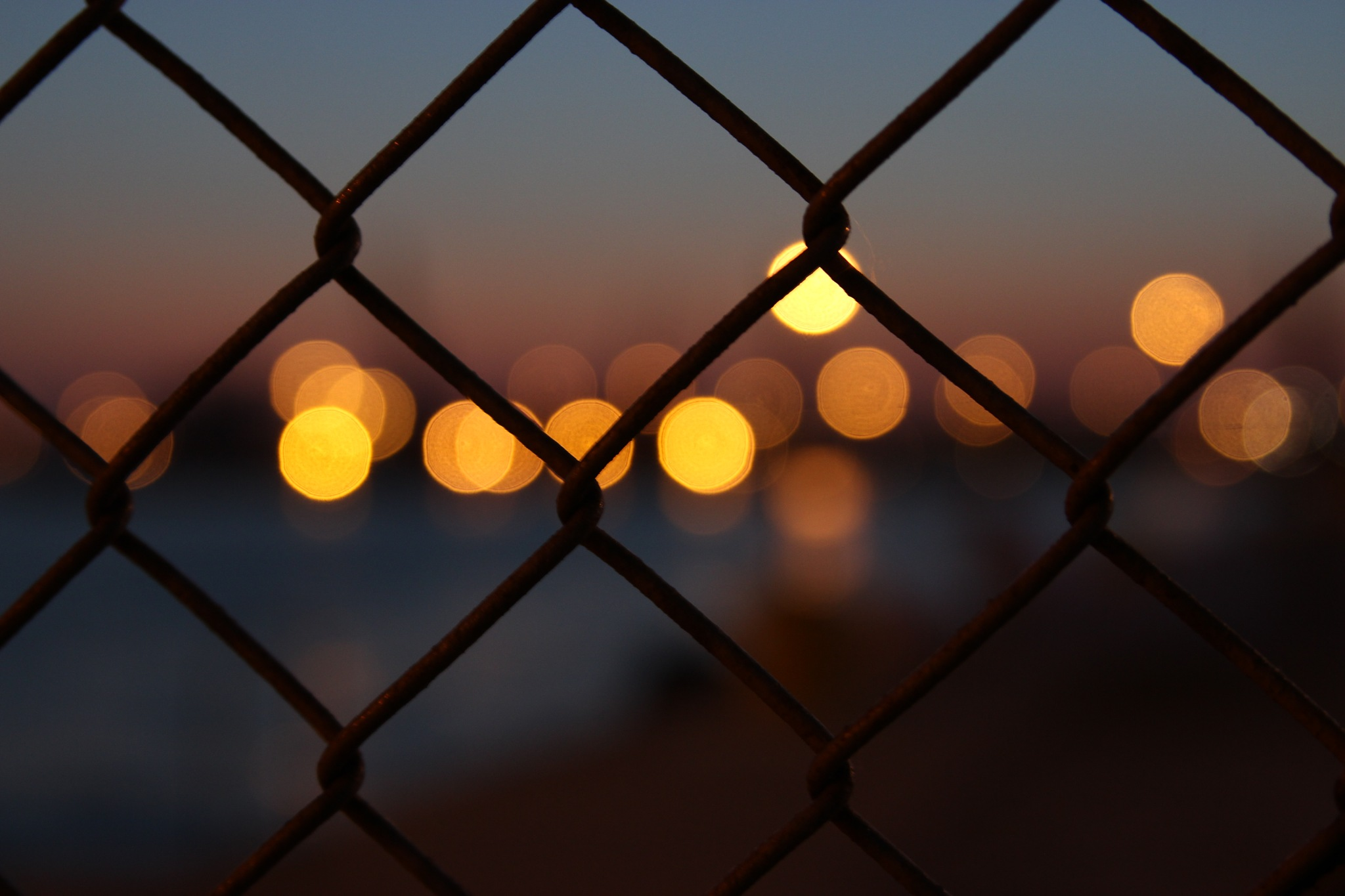 fence lights by lydiadk