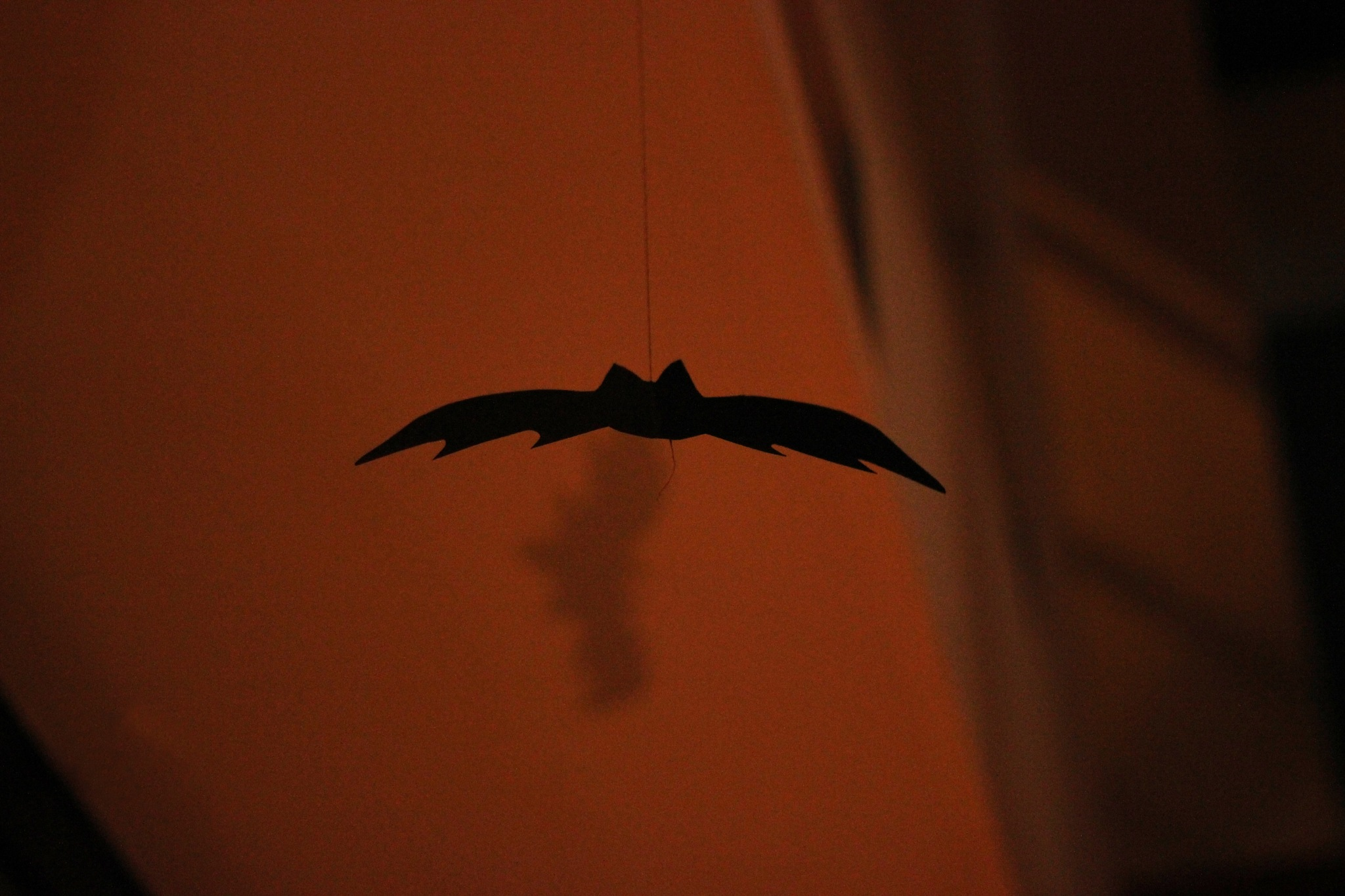 spooky bat by lydiadk