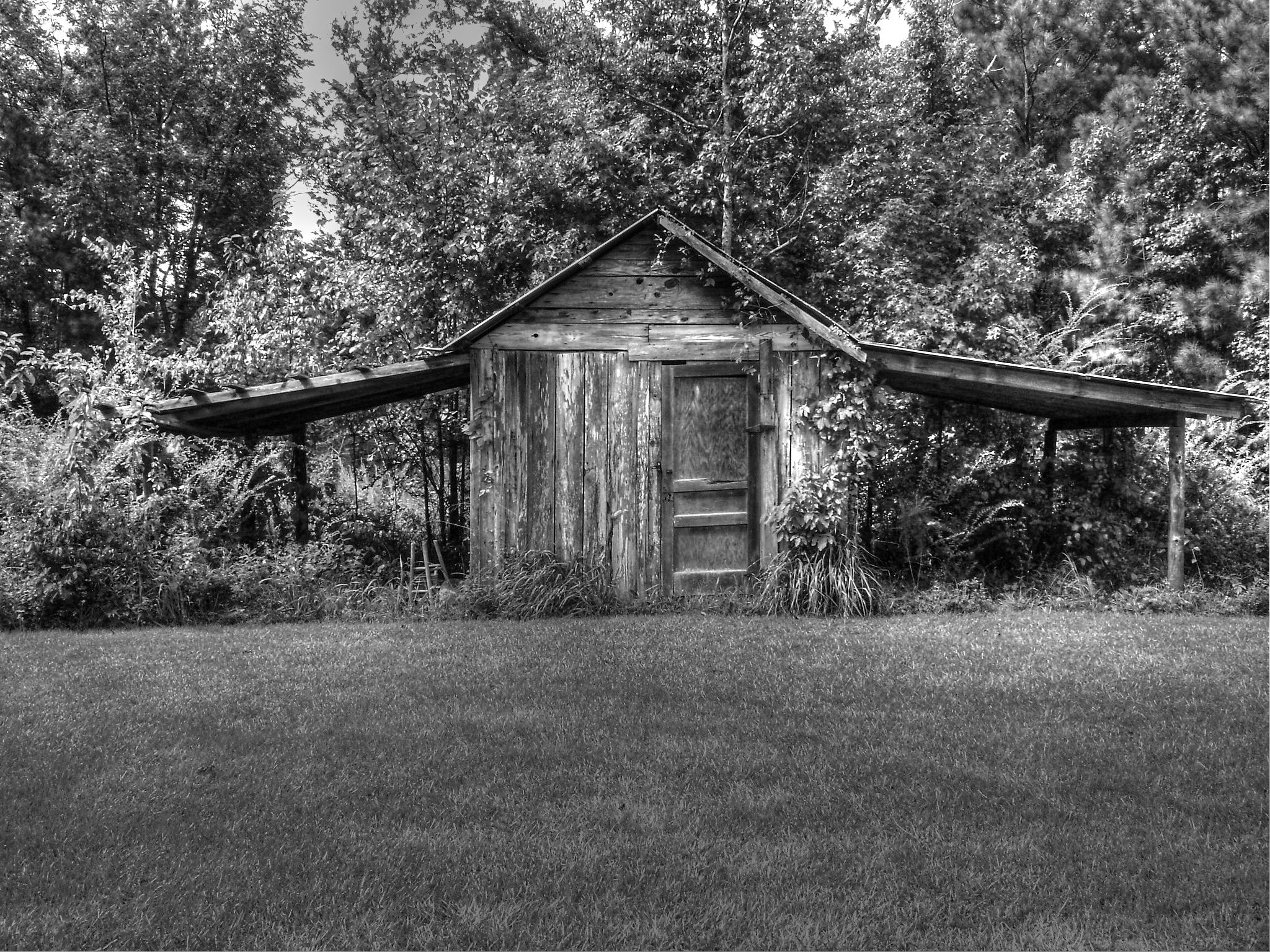 """""""Old South Shed in Alabama"""" by Larry Woodson"""