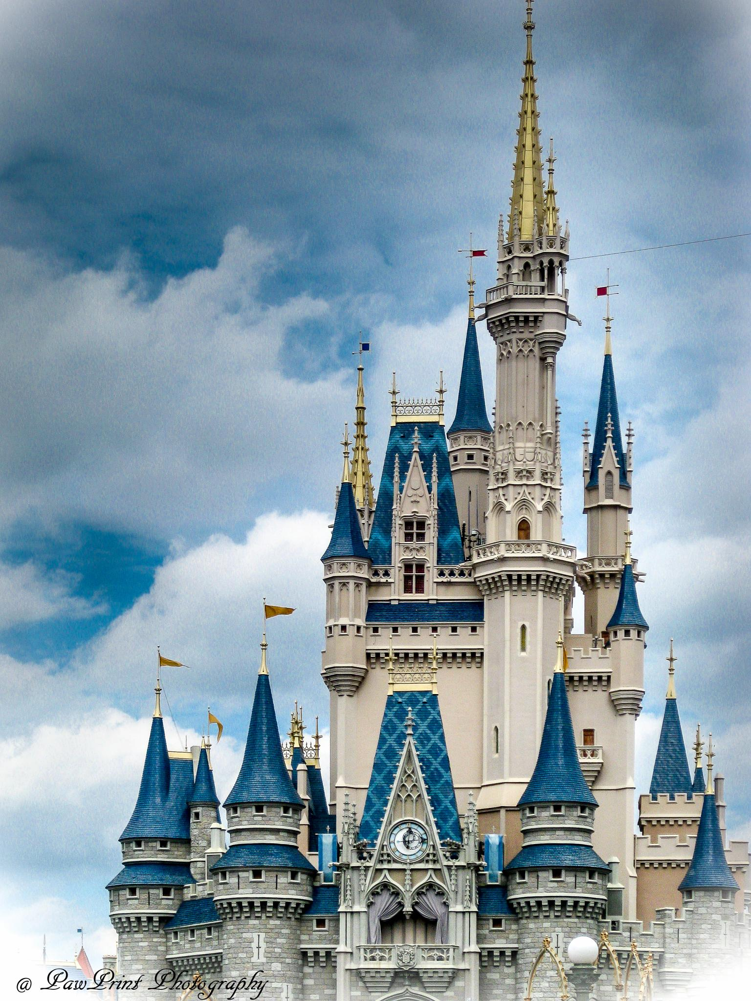 Magic Kingdom by Lynn  Flood/PawPrint Photography/Flash Flood Photo and Design
