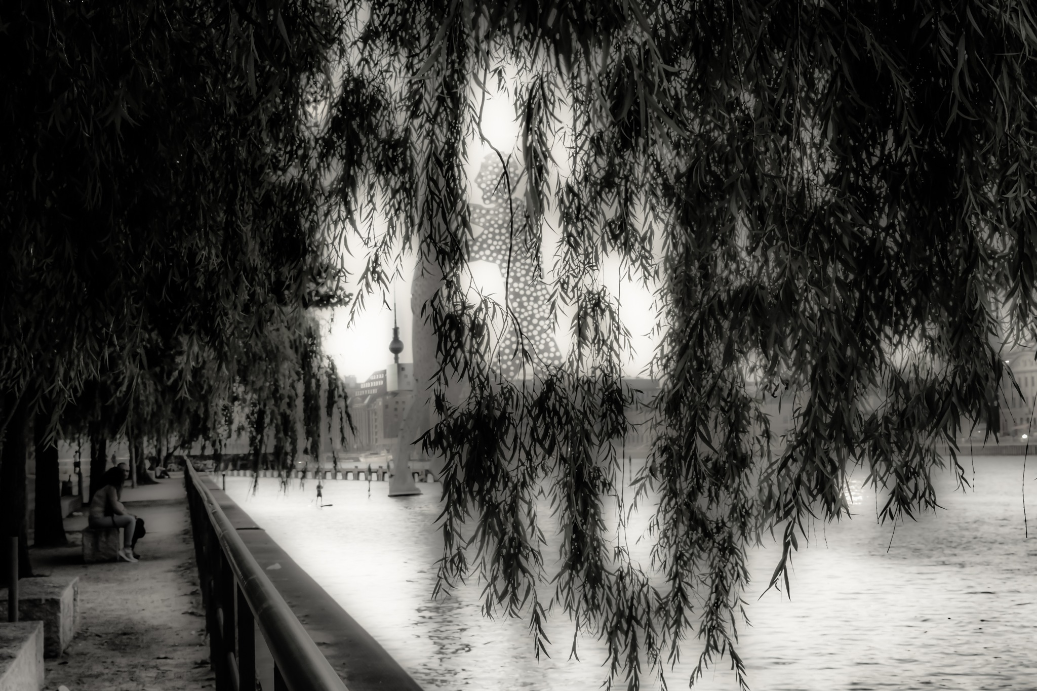 ... under the weeping willow ...  by Johannes Hauser