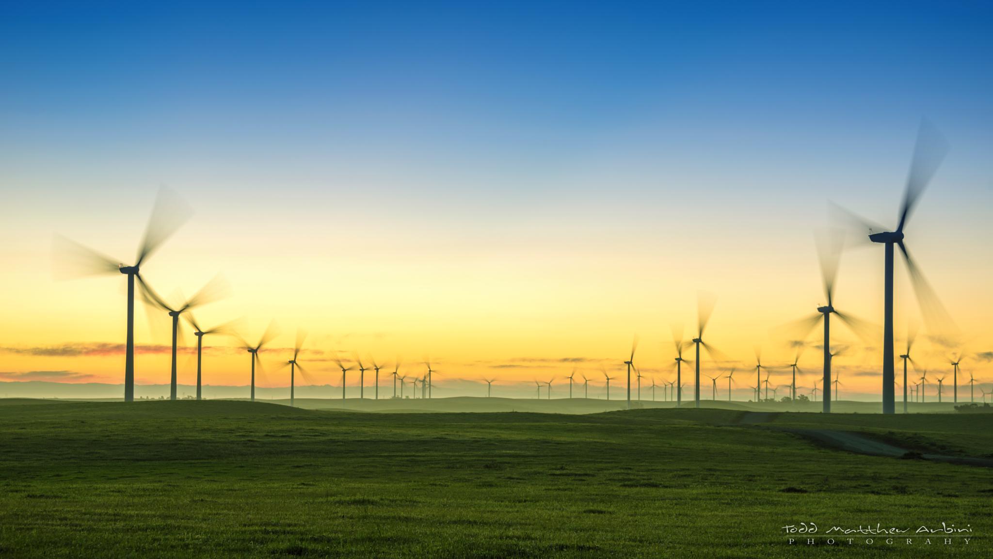 Wind Farm at Dawn by Todd Arbini