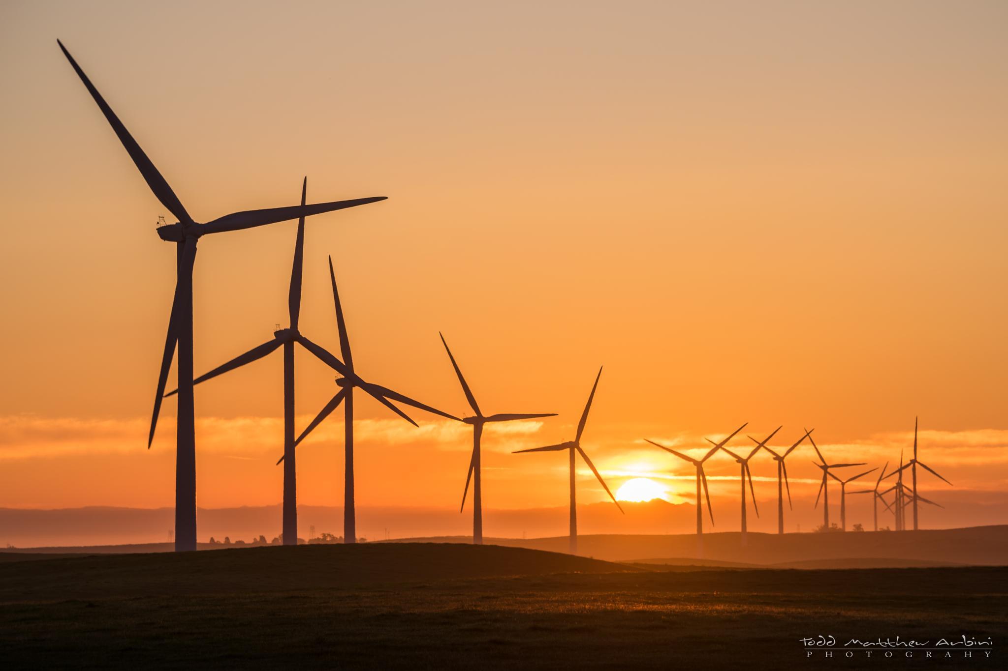 Wind Farm Sunrise by Todd Arbini