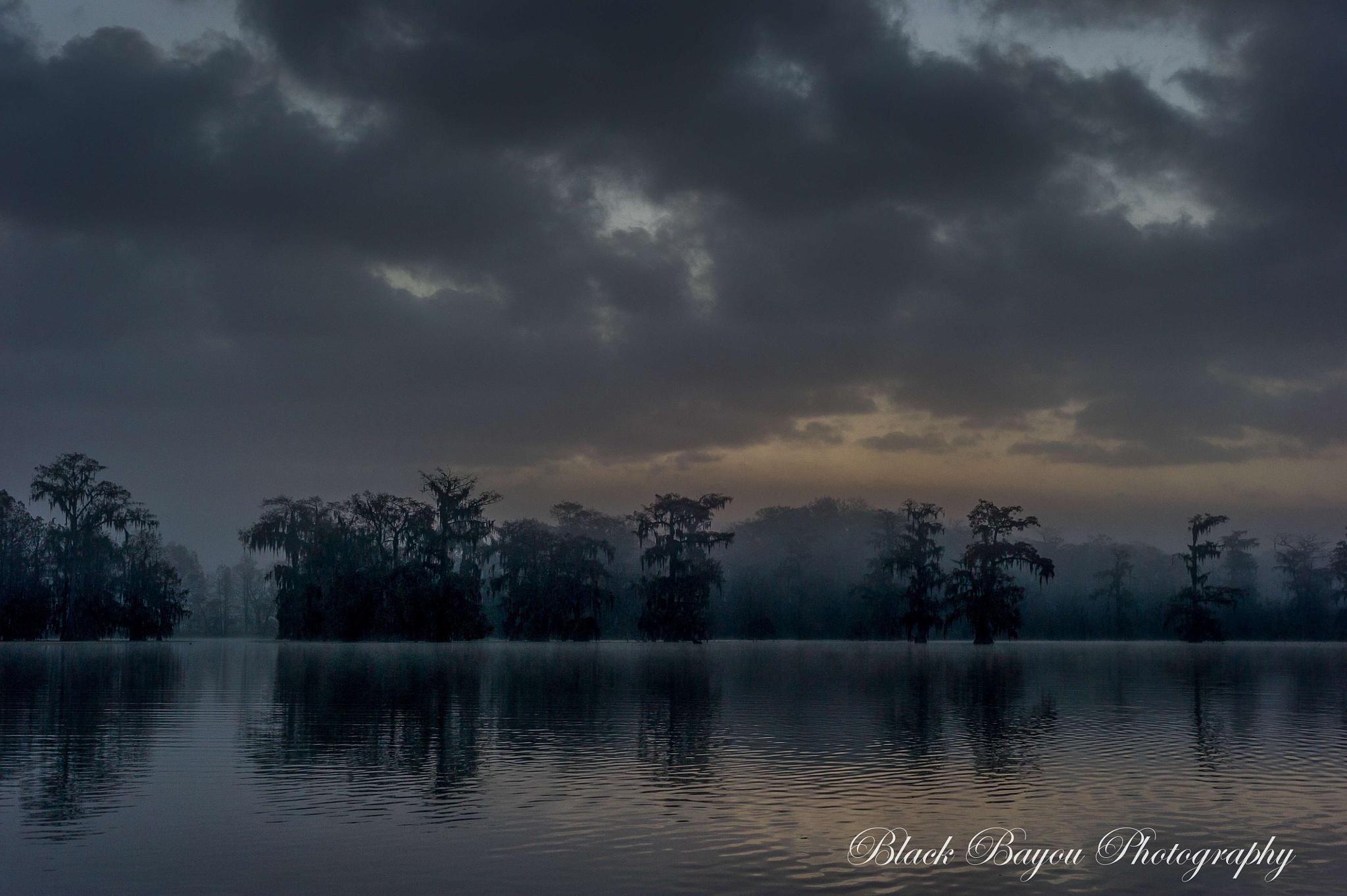 Fog On The Bayou by BlackBayouPhotography