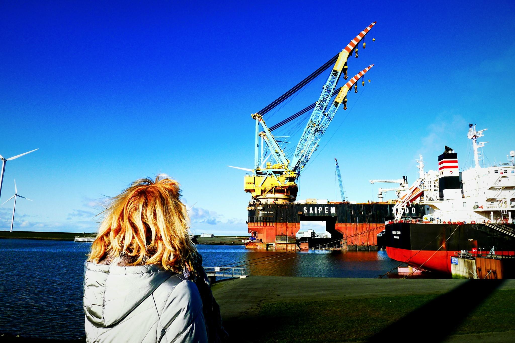Harbour view by Jankees Metzlar