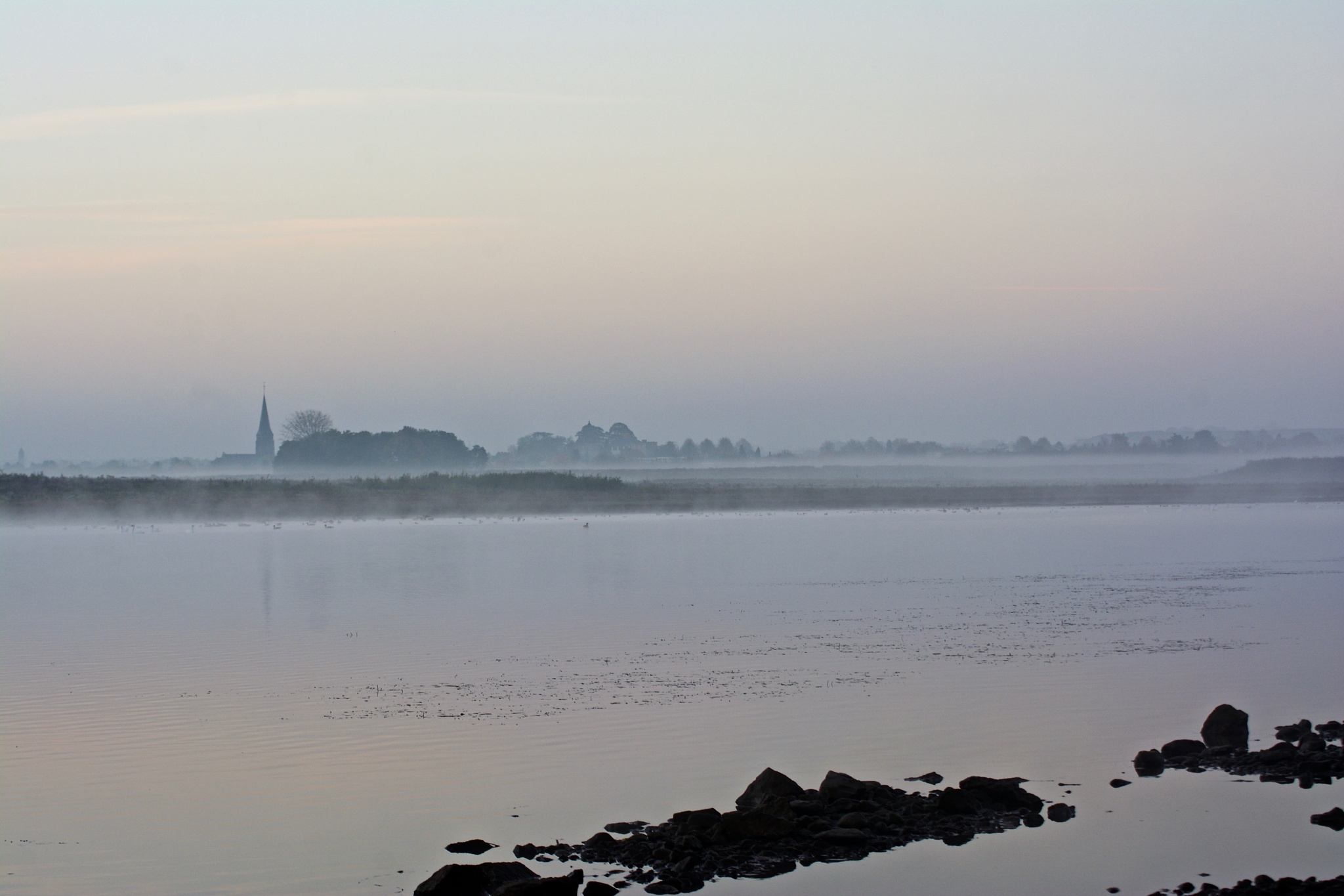 Misty mornin' by toinelenssen