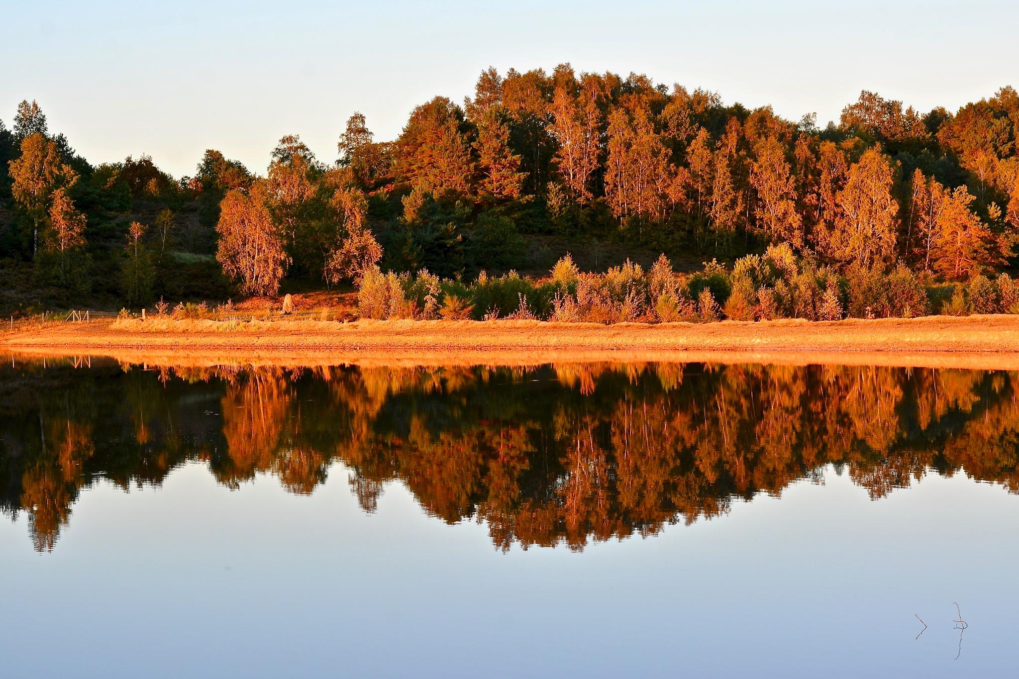 Autumn mirror by toinelenssen