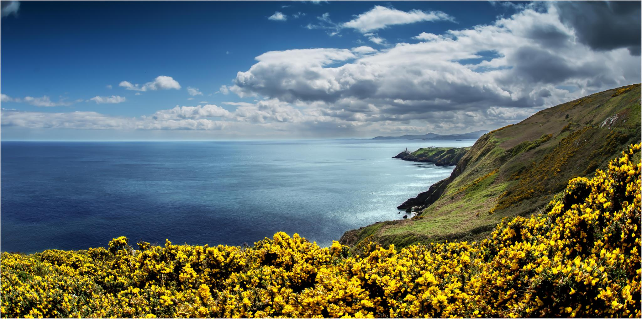 Coast of Howth by Dr. Ortwin Khan