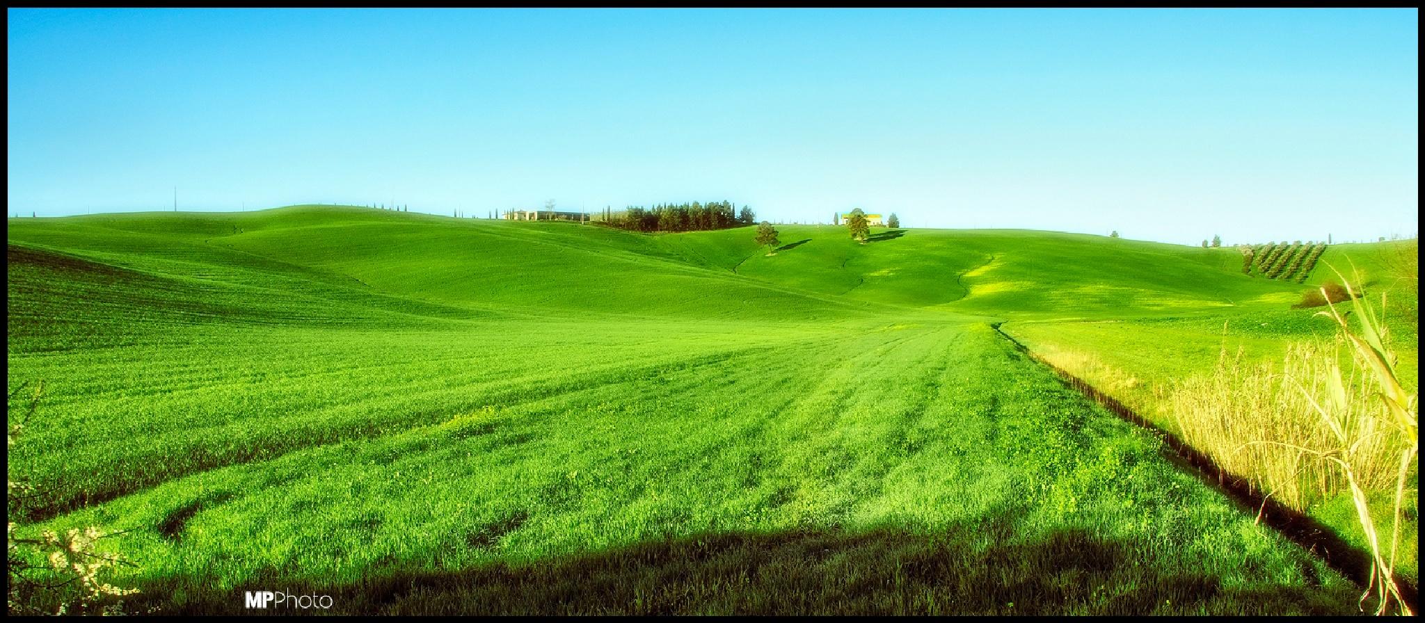 Green Velvet by marc3llino
