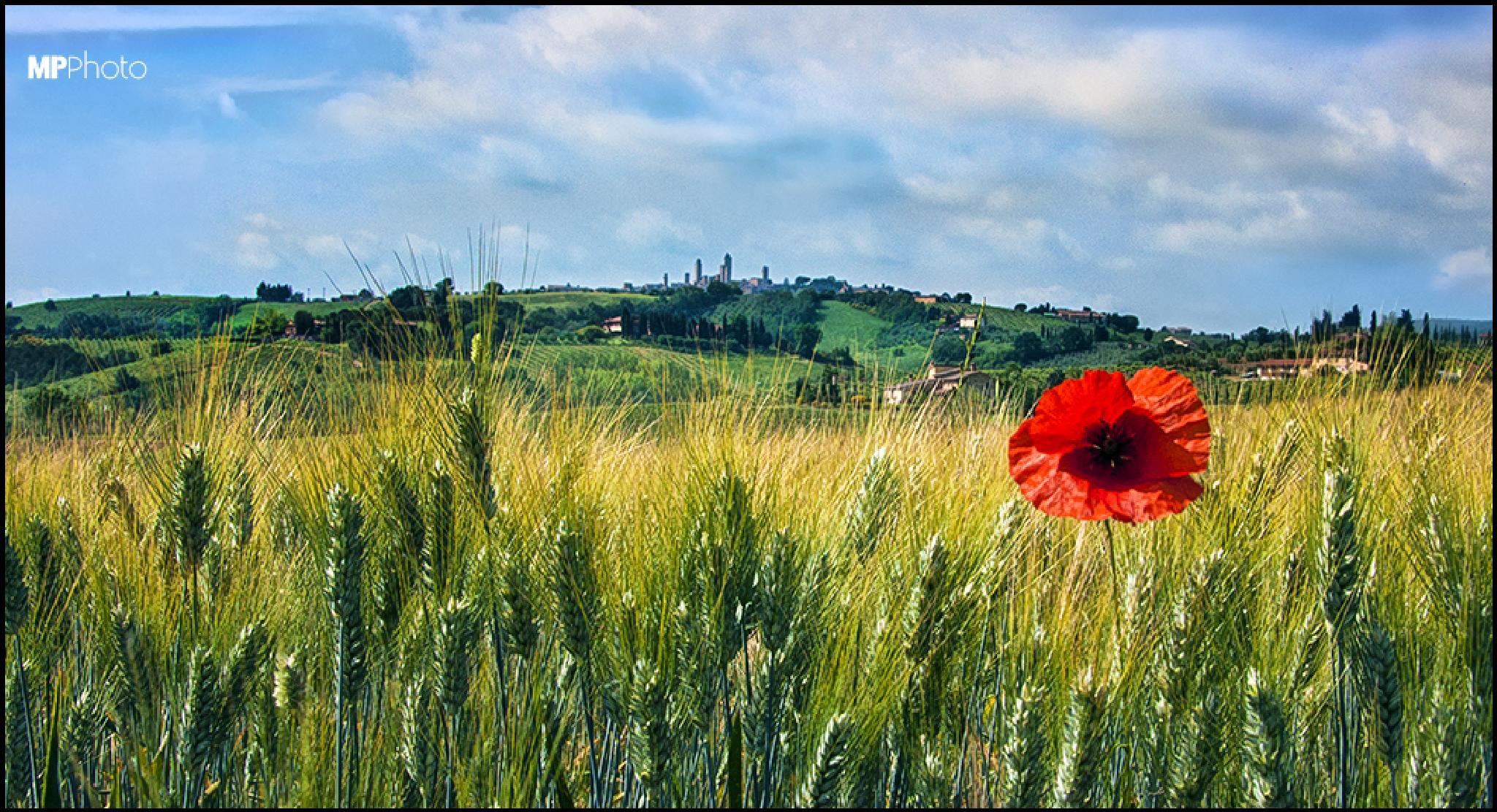 San Gimignano by marc3llino