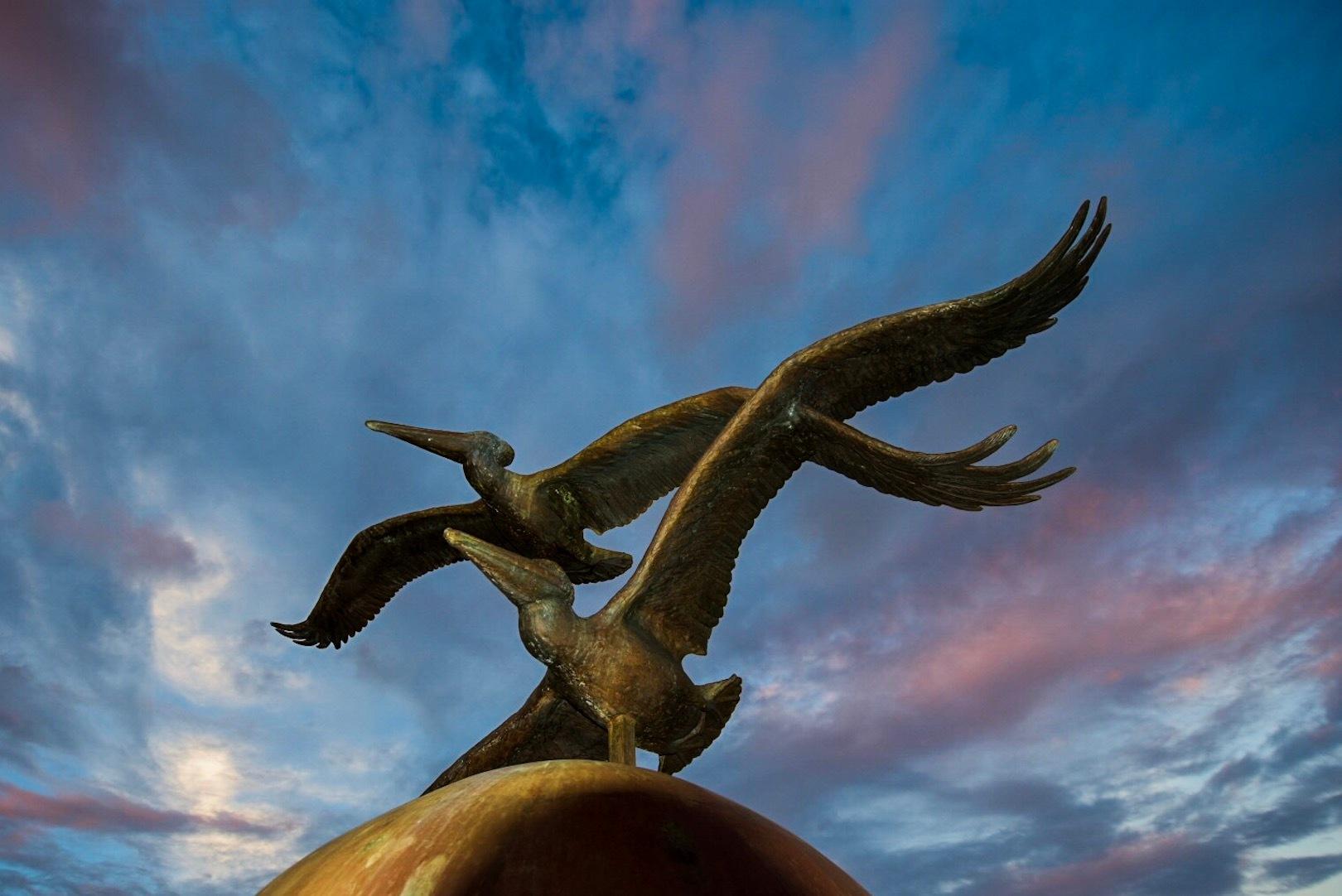 Pelican Sunset by John Schneyer